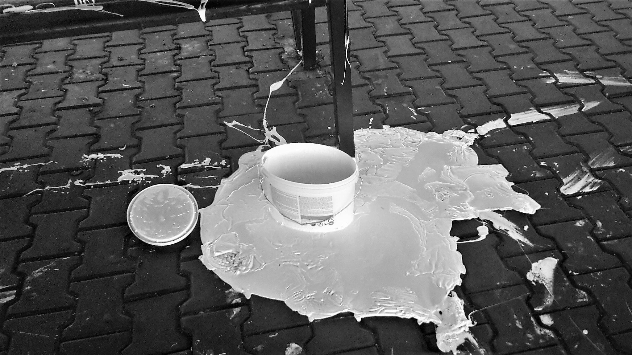 White :-) by  robert pojedinec robert