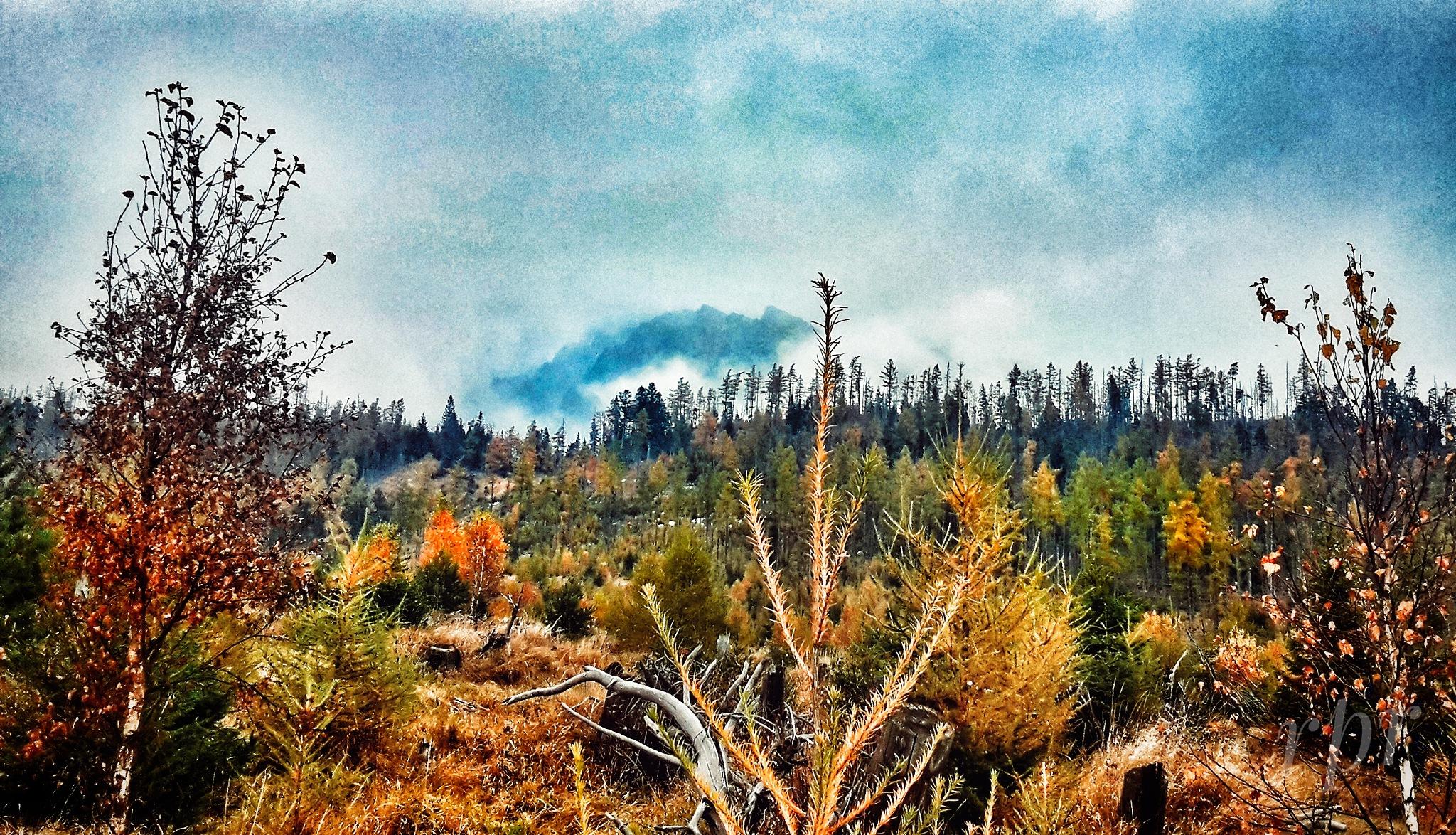 Autumn 2☺ by  robert pojedinec robert