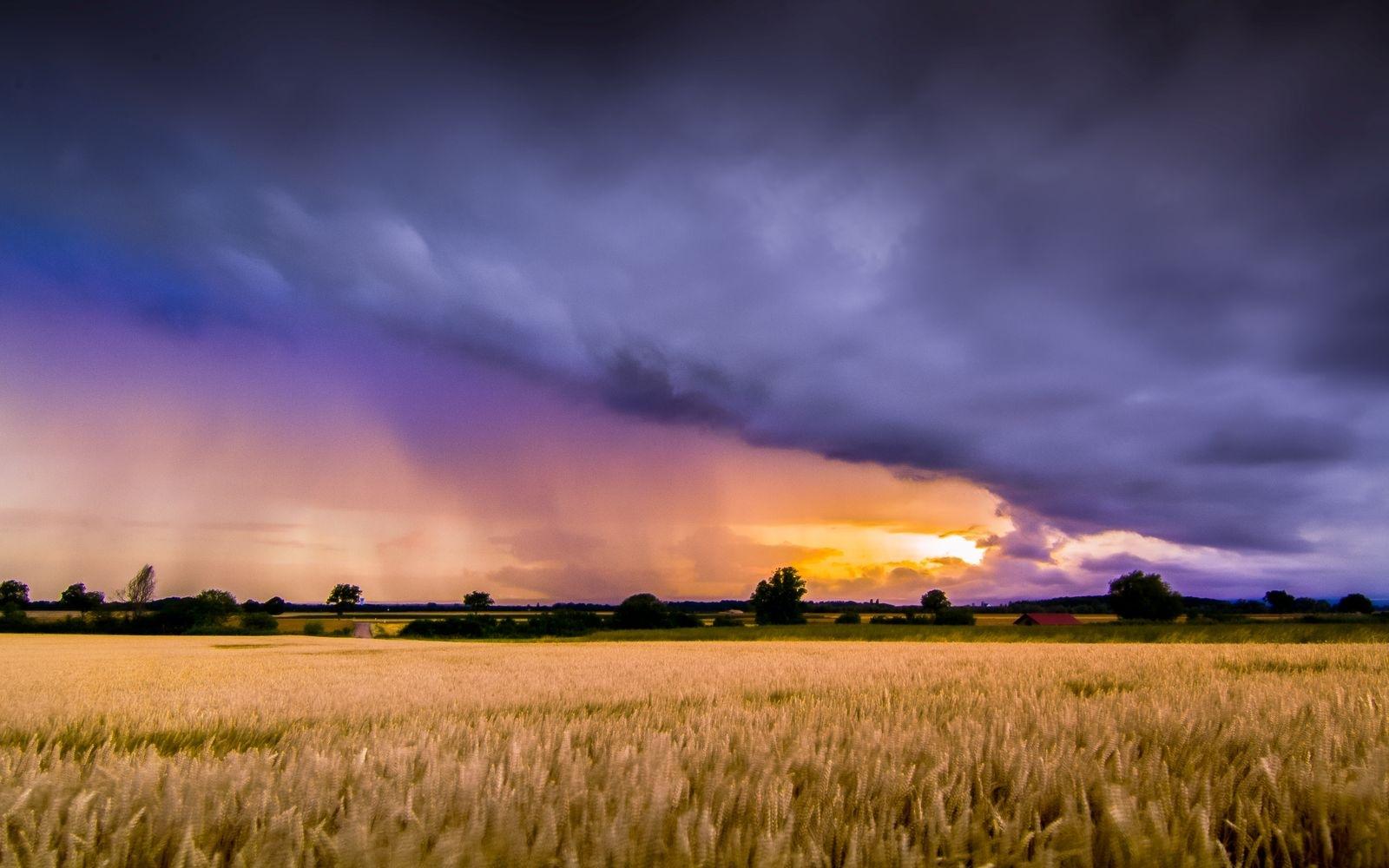 Rainbow Colours by Darblanc