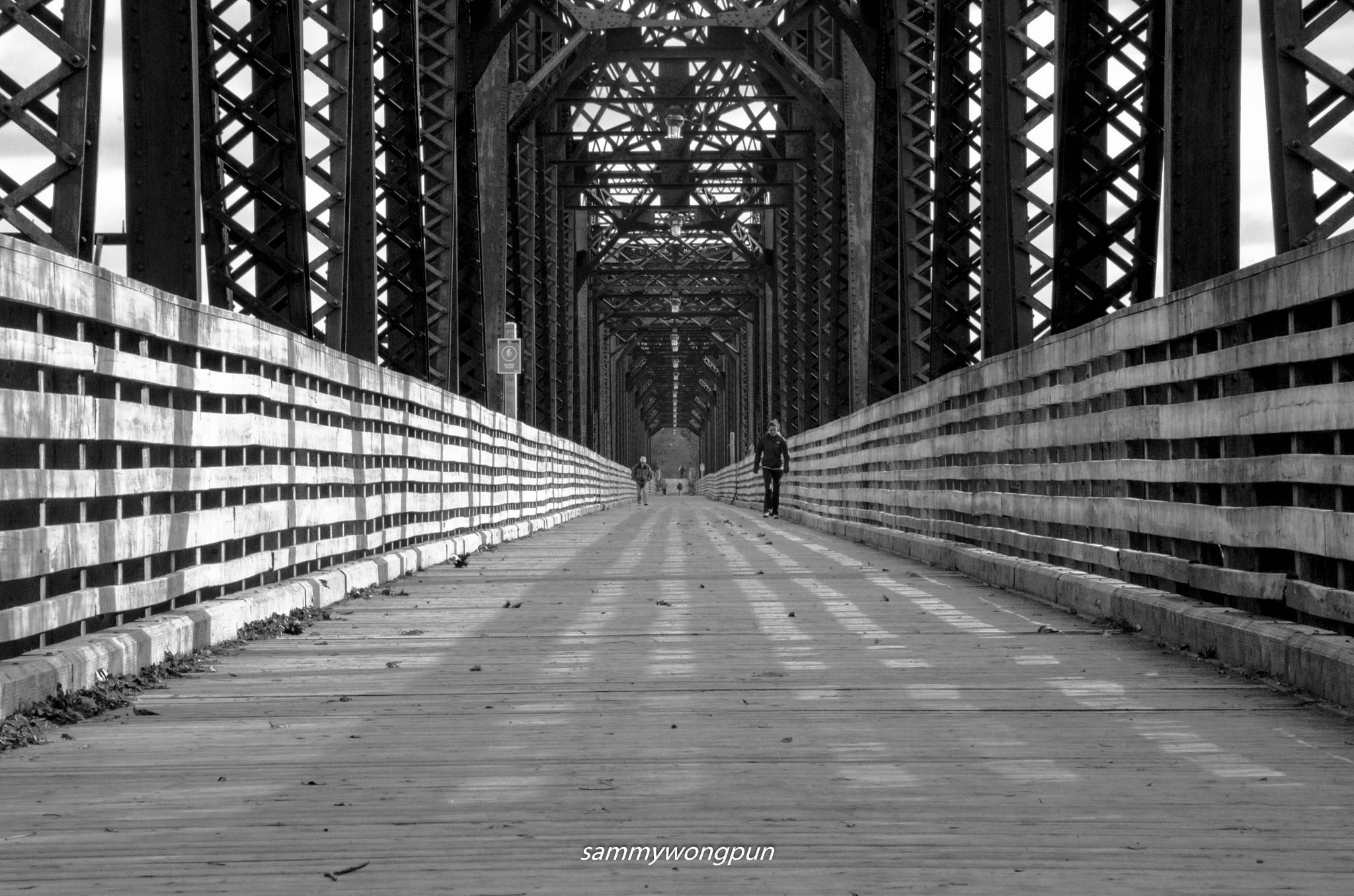 Bill Thorpe Walking Bridge by sammywongpun