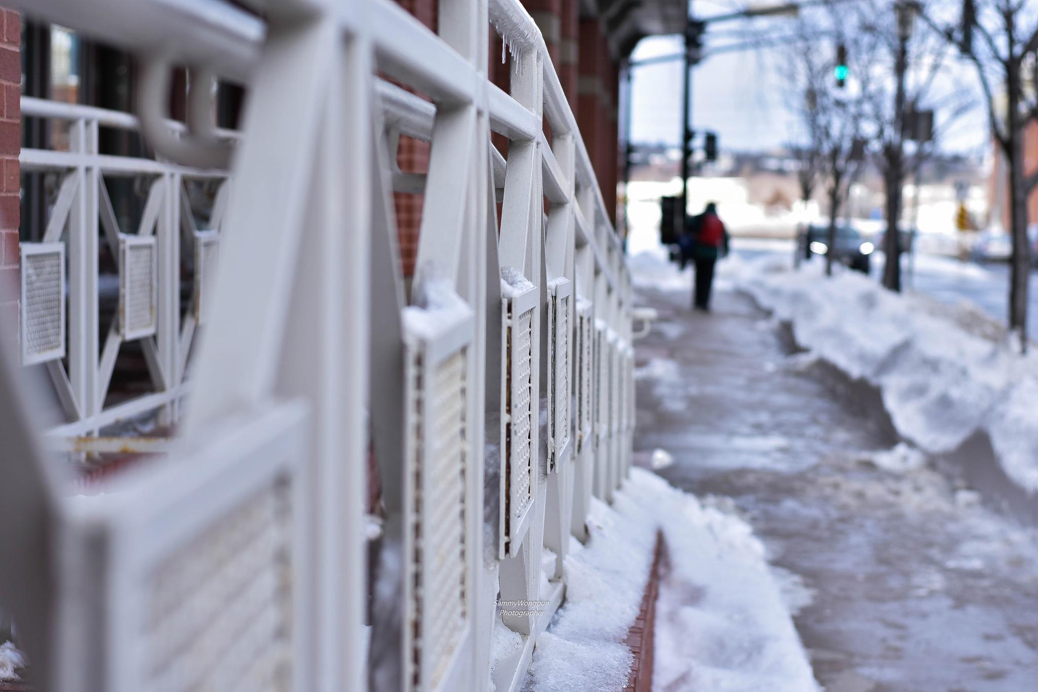 Cold Fredericton by sammywongpun