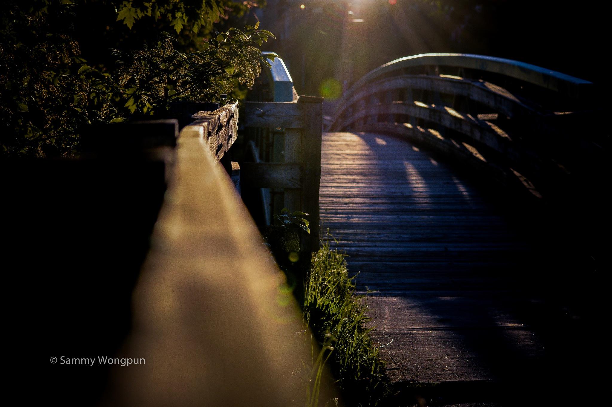 stone bridge by sammywongpun