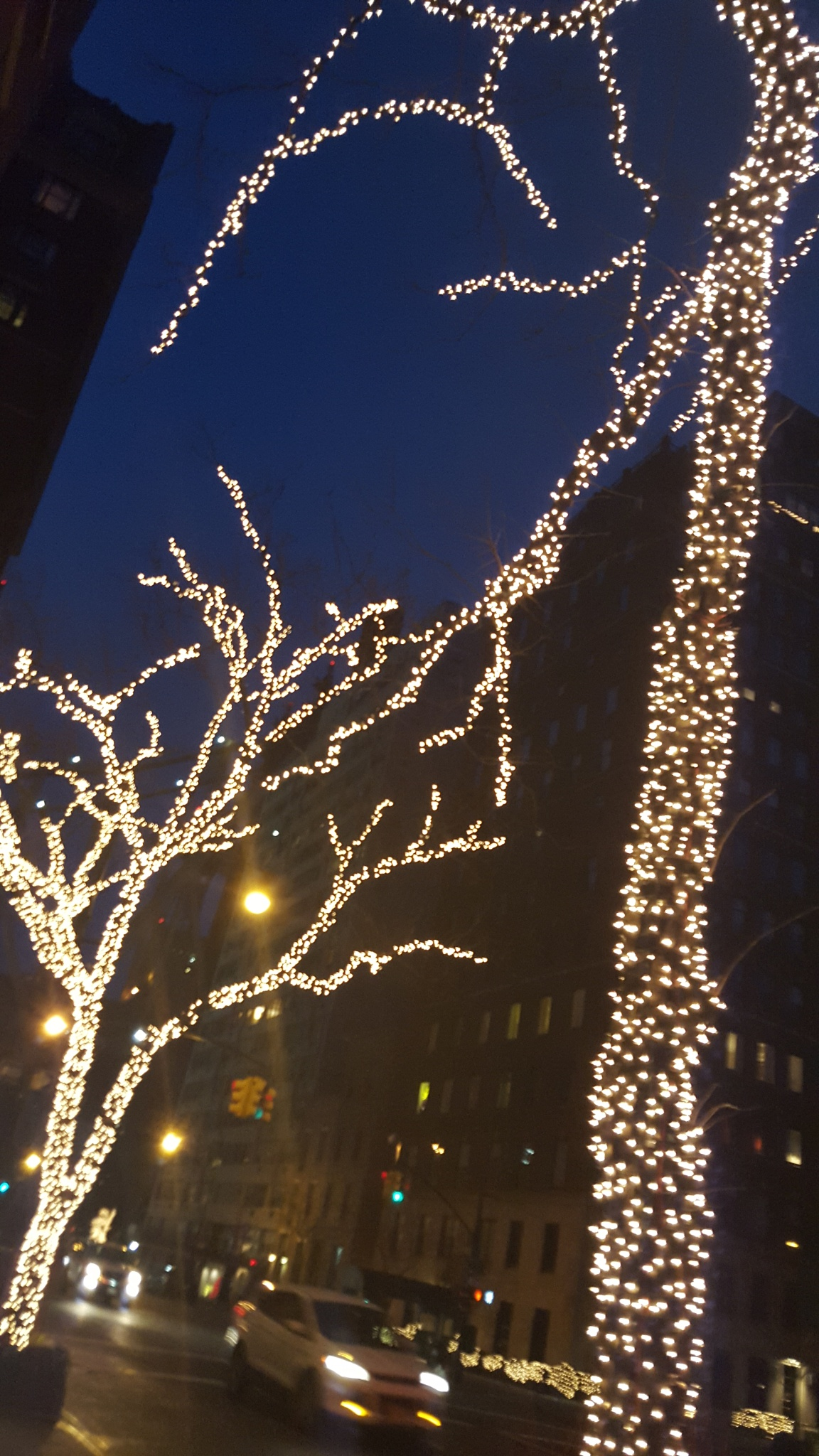 Christmas lights by waltermar48