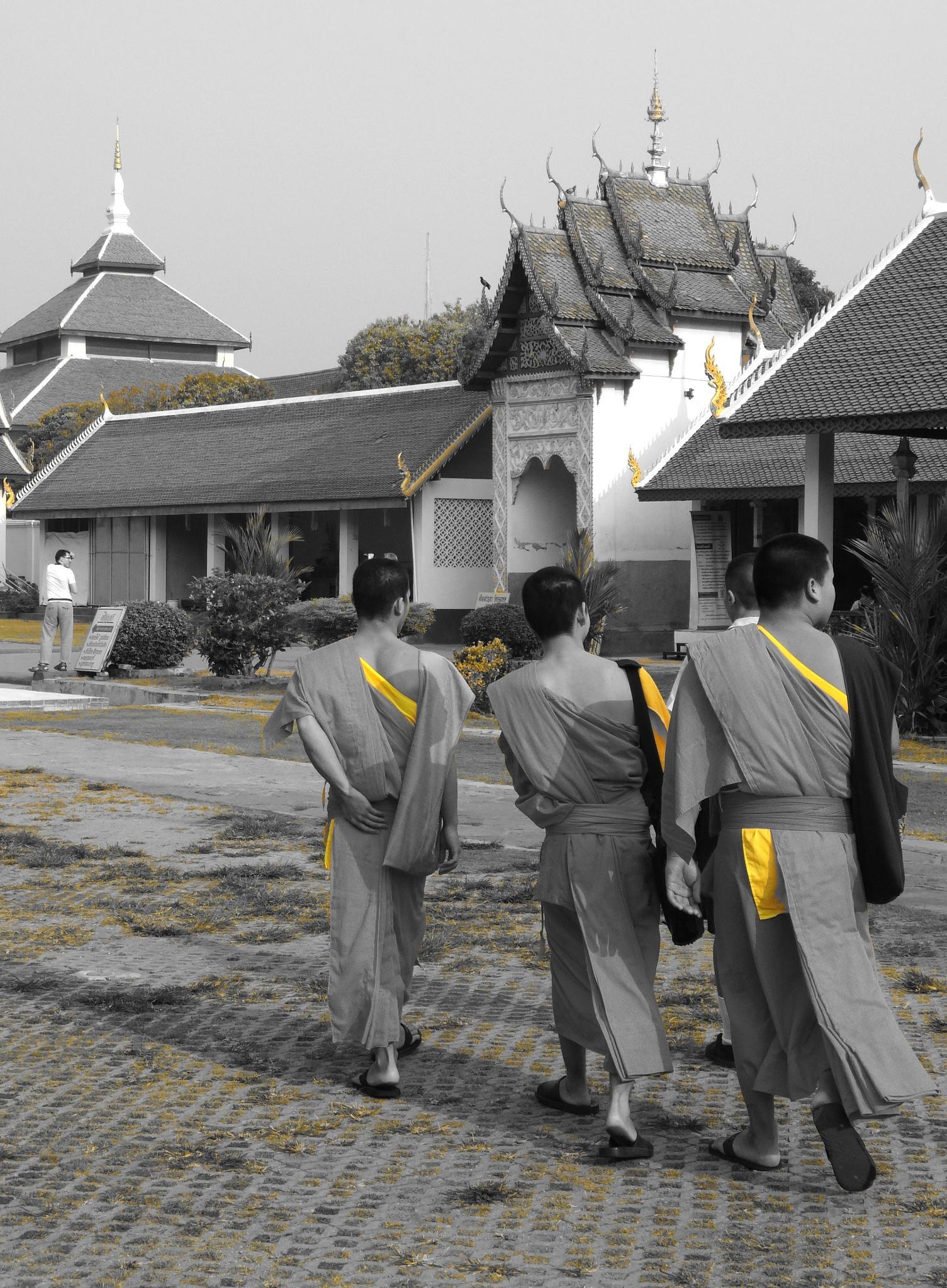 Thaïlande: le Temple de Lampang (Wat Phra That Lampang Luang). 2/? by Daniel Van der Beken - Iribarren