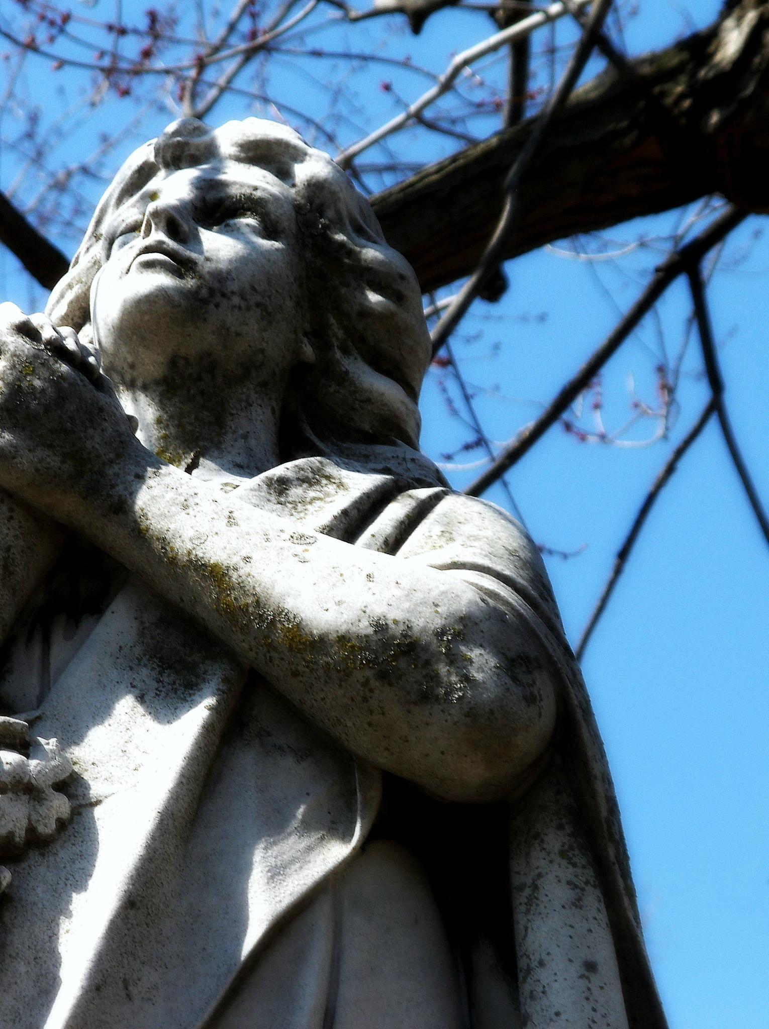 The Prayer by Hal Stedman