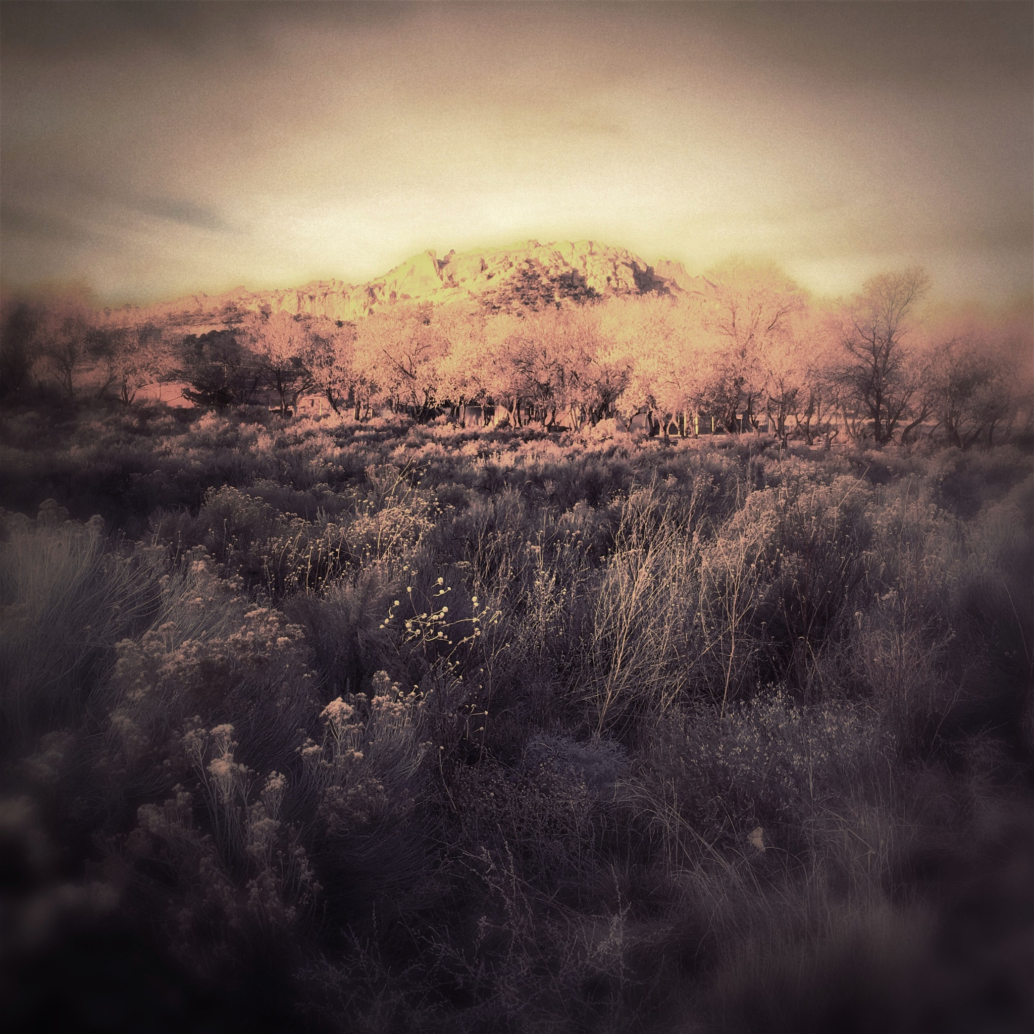 Hipstamatic Sunrise by Jeff Jones