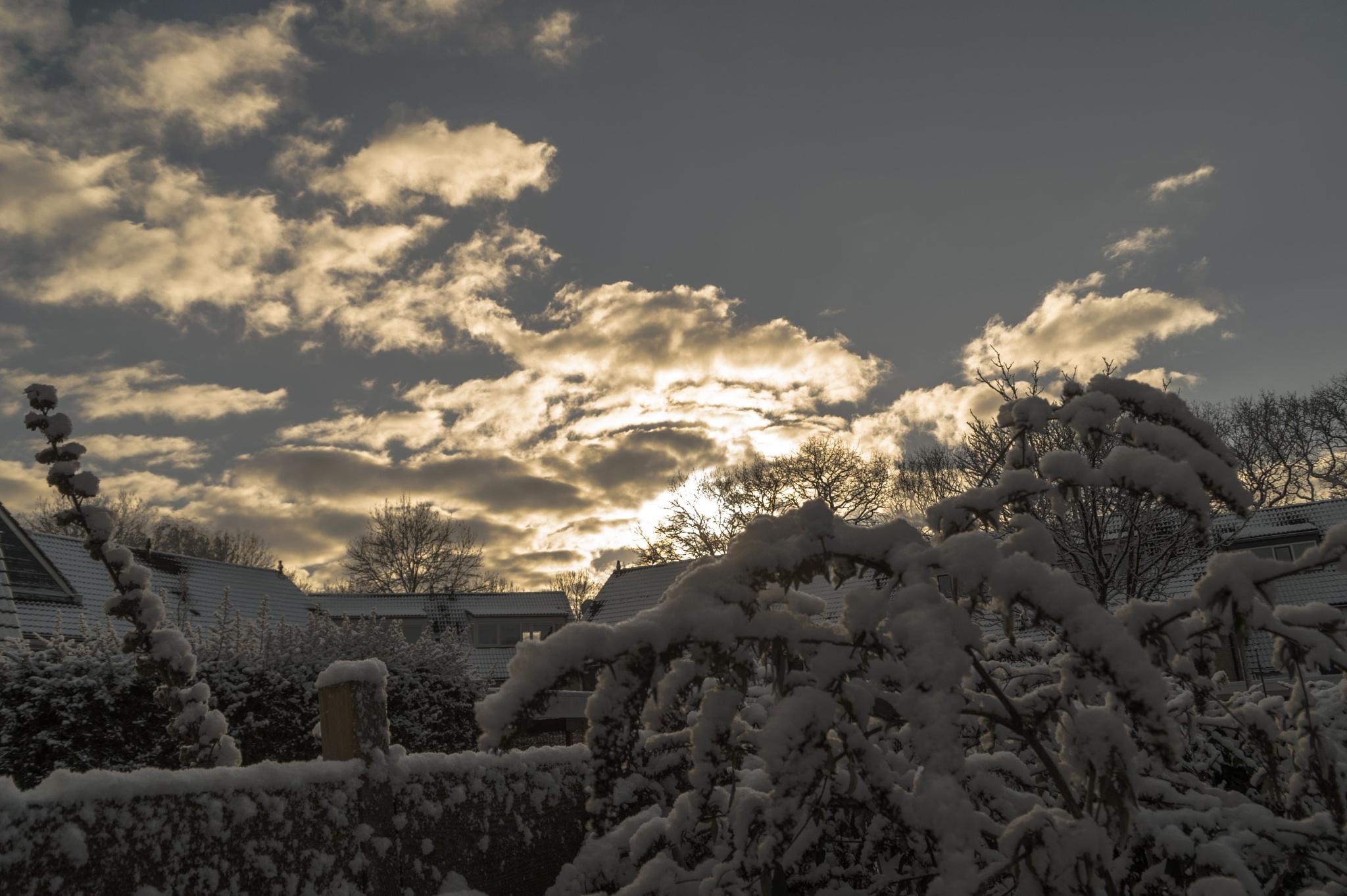 Snow  by Roelof de Haan