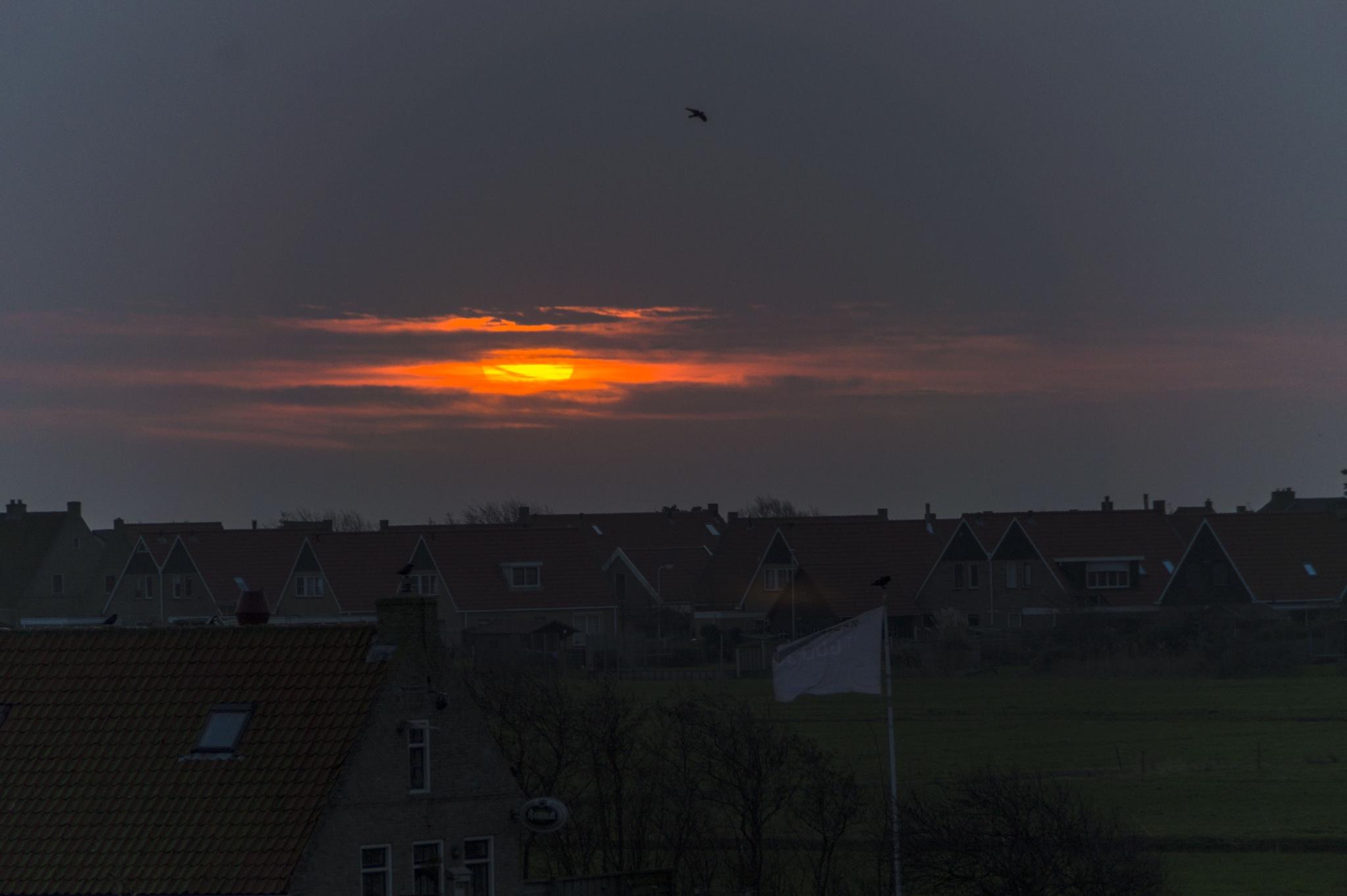 Sunrise at Midsland , Terschelling  by Roelof de Haan