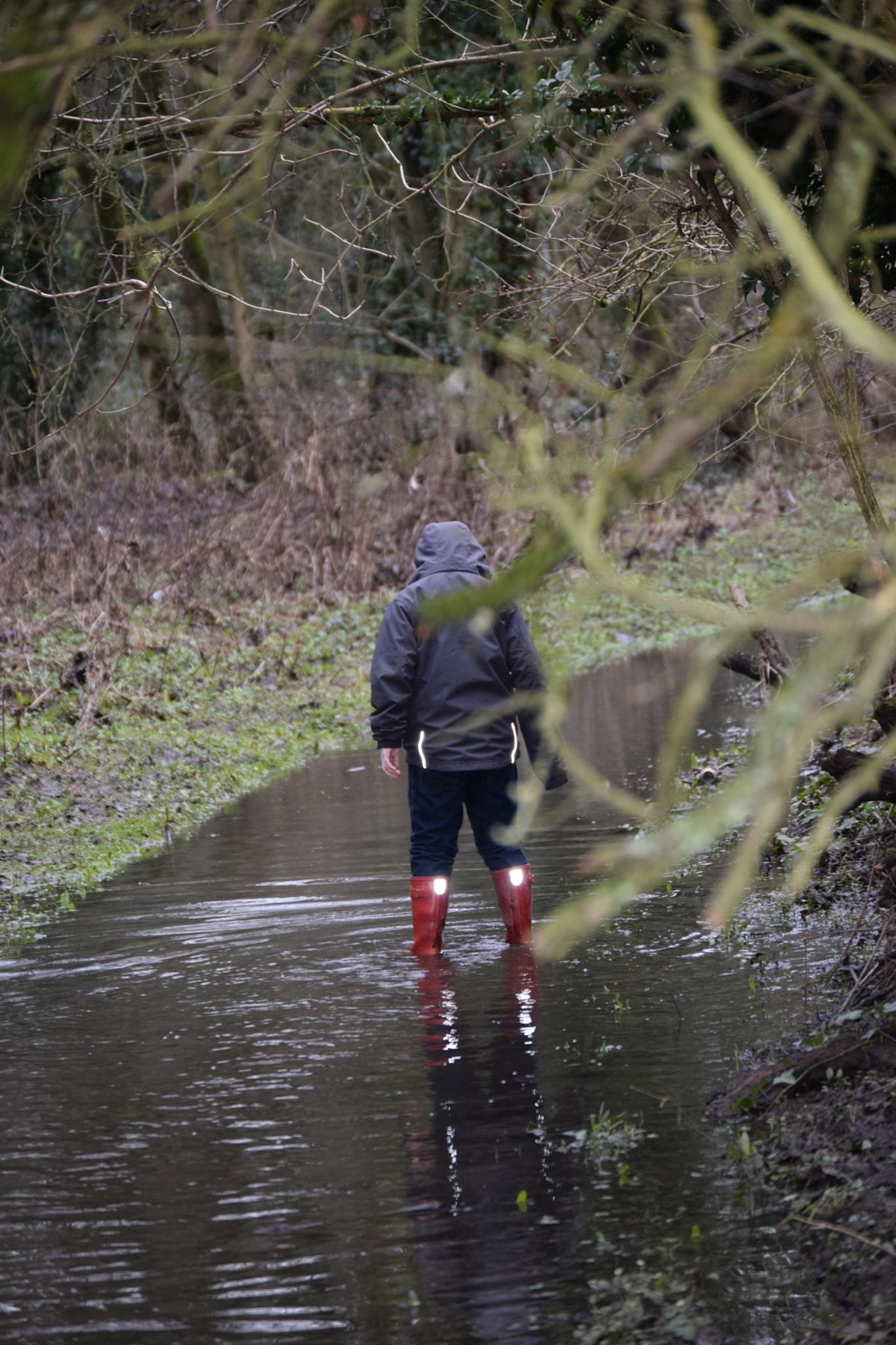 puddles  by bryan dellbridge