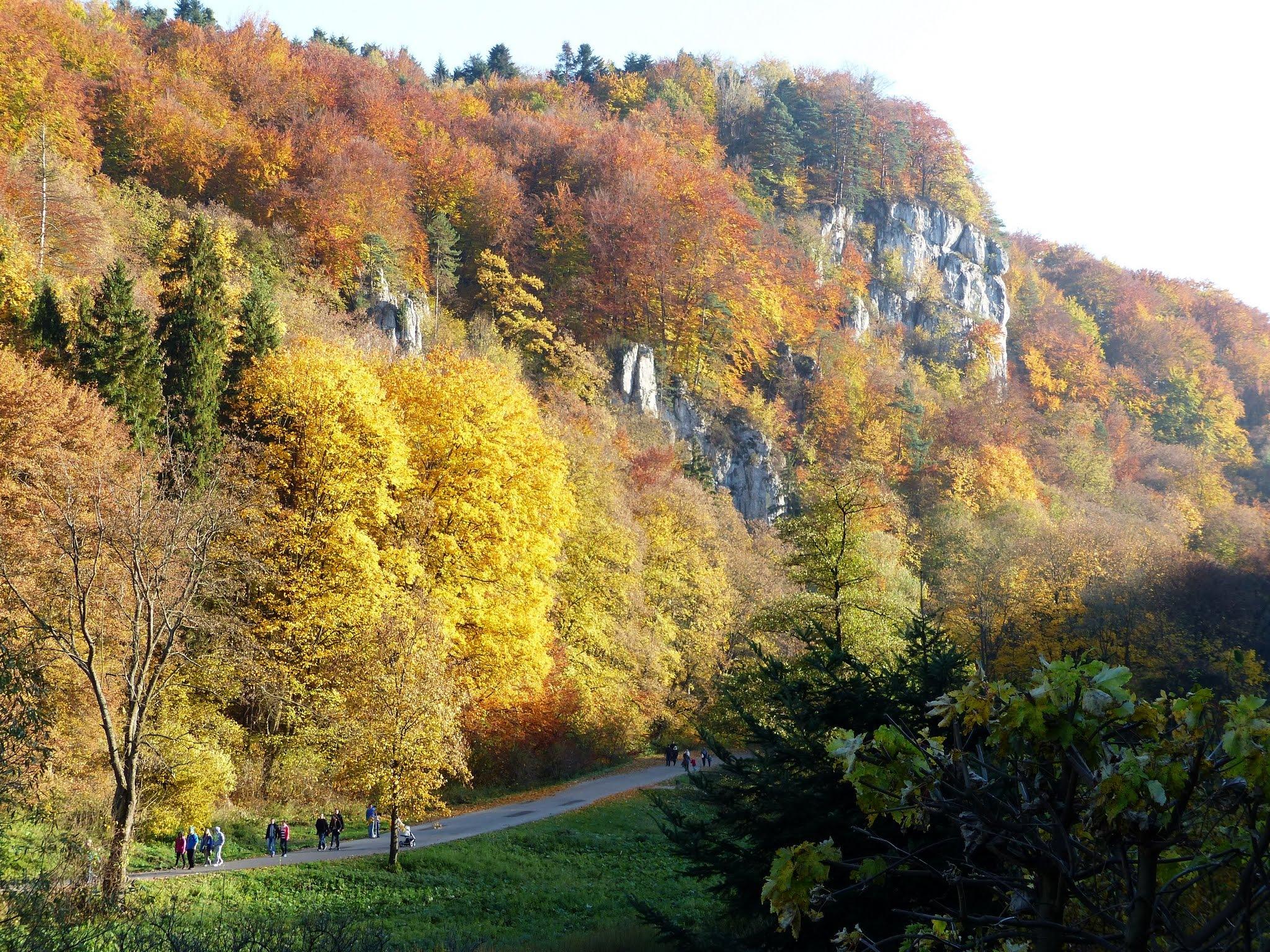 Ojcowski National Park, Poland 6 by emalfni