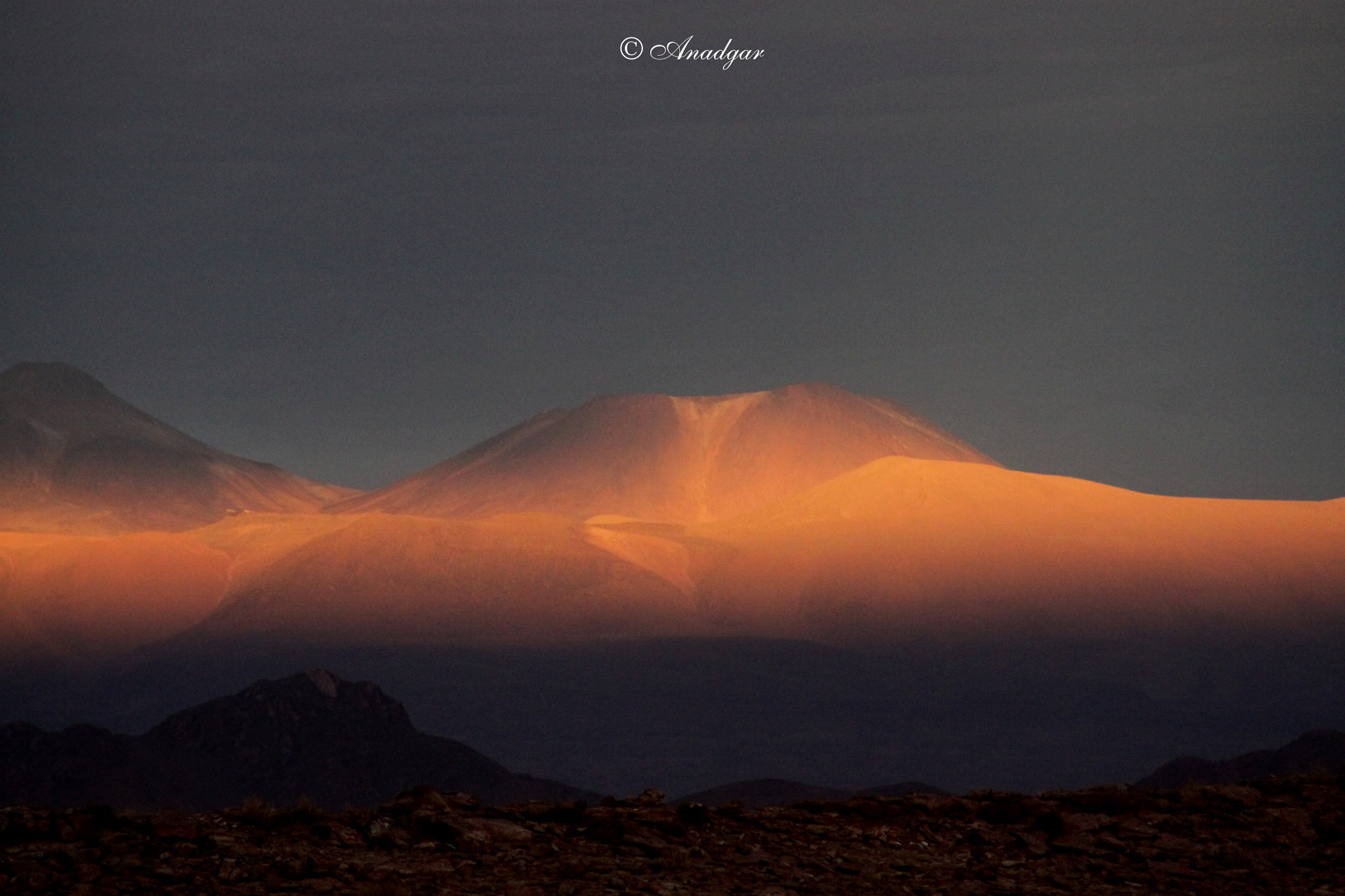 Andes Loa by Anadgar03