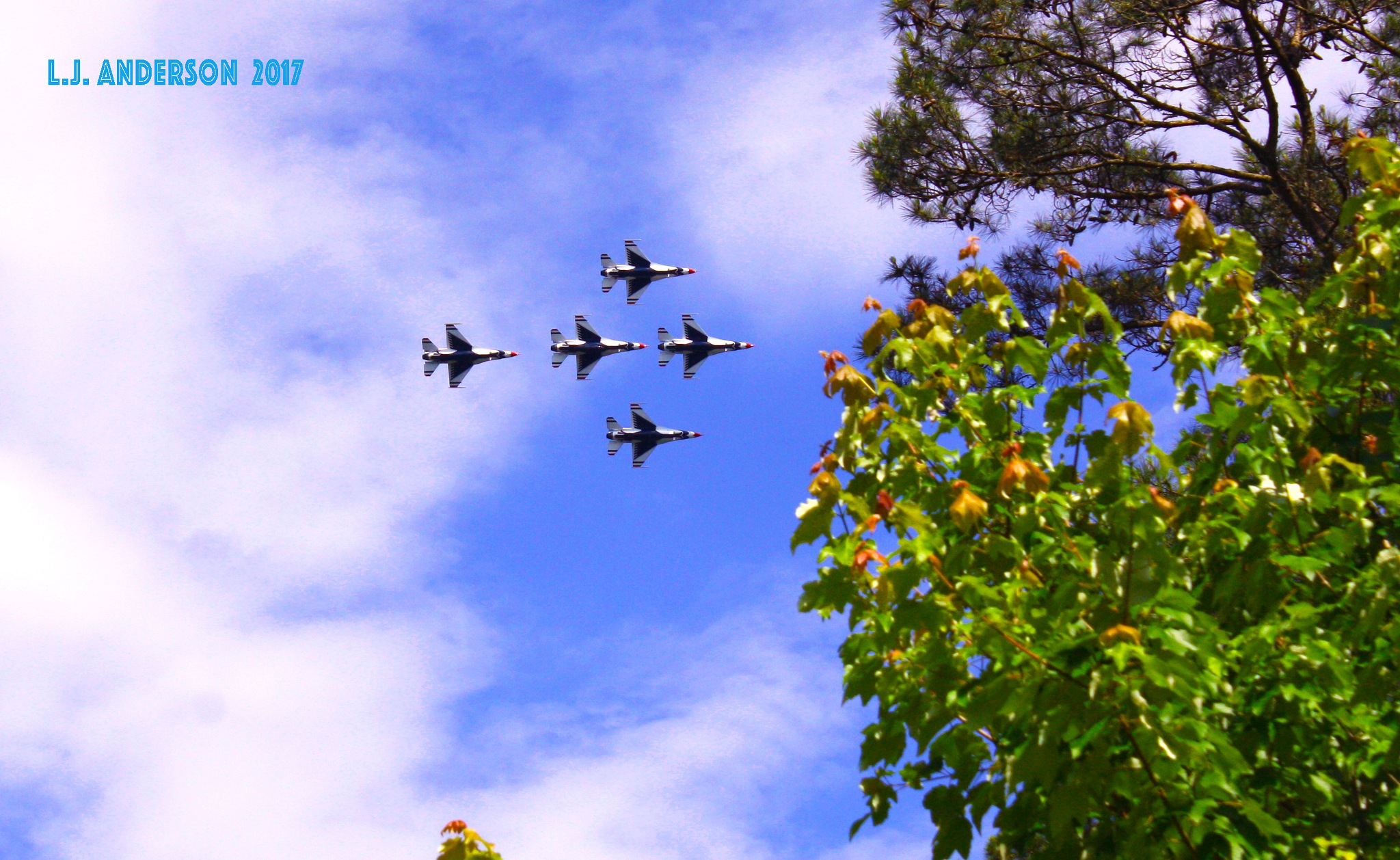 Thunderbirds by Linda (L J ) Anderson
