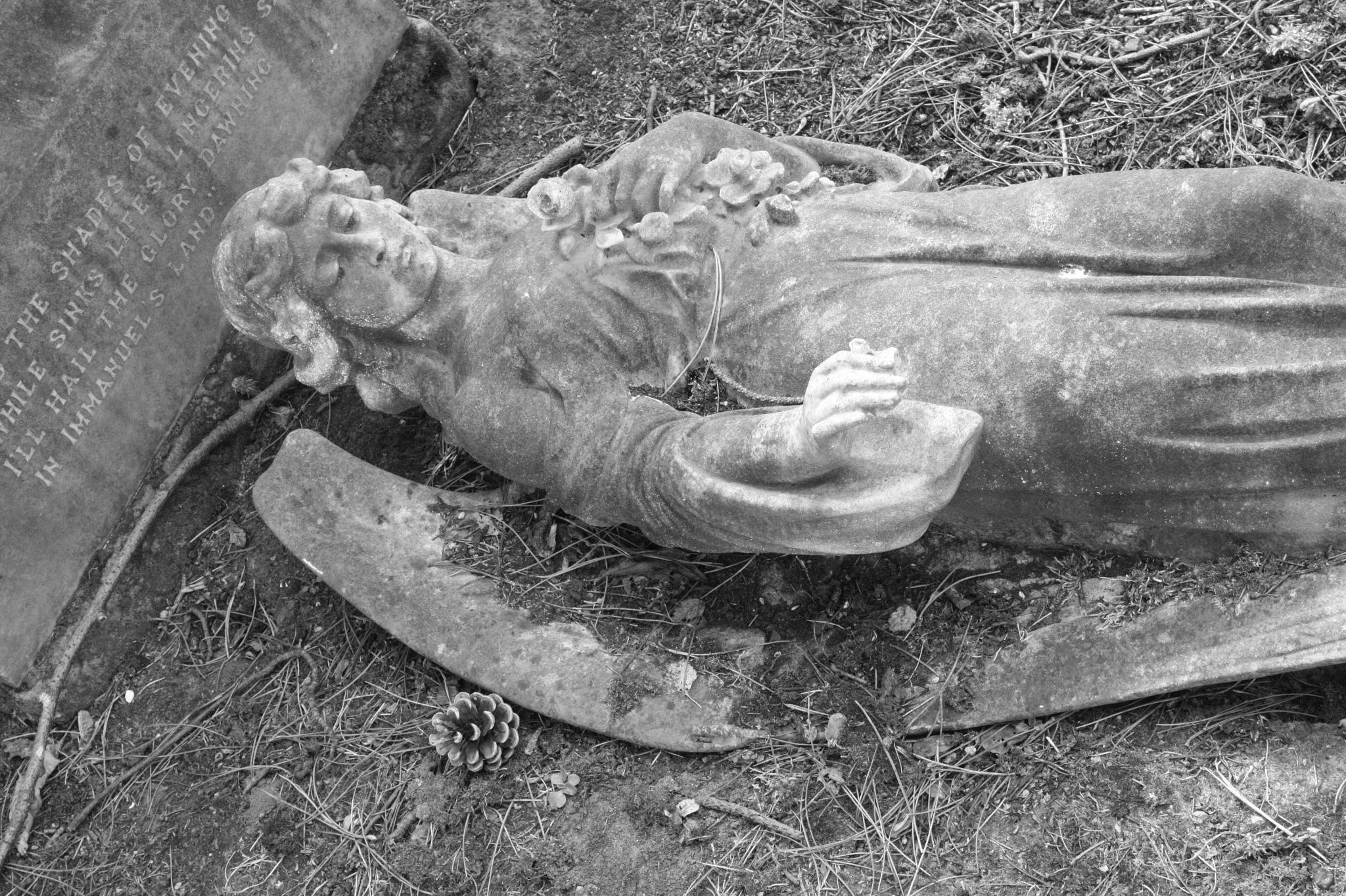 fallen angel  by stephencdickson