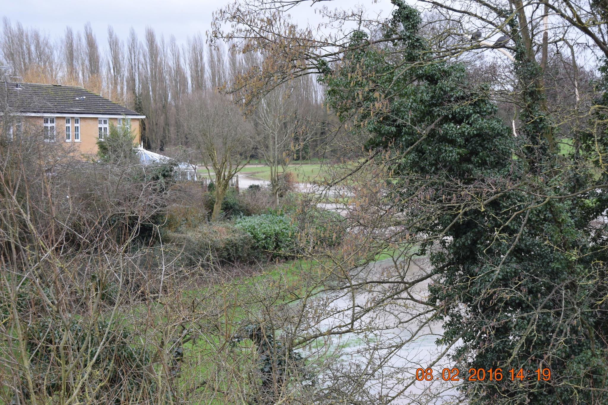 Flooded fields by towen78