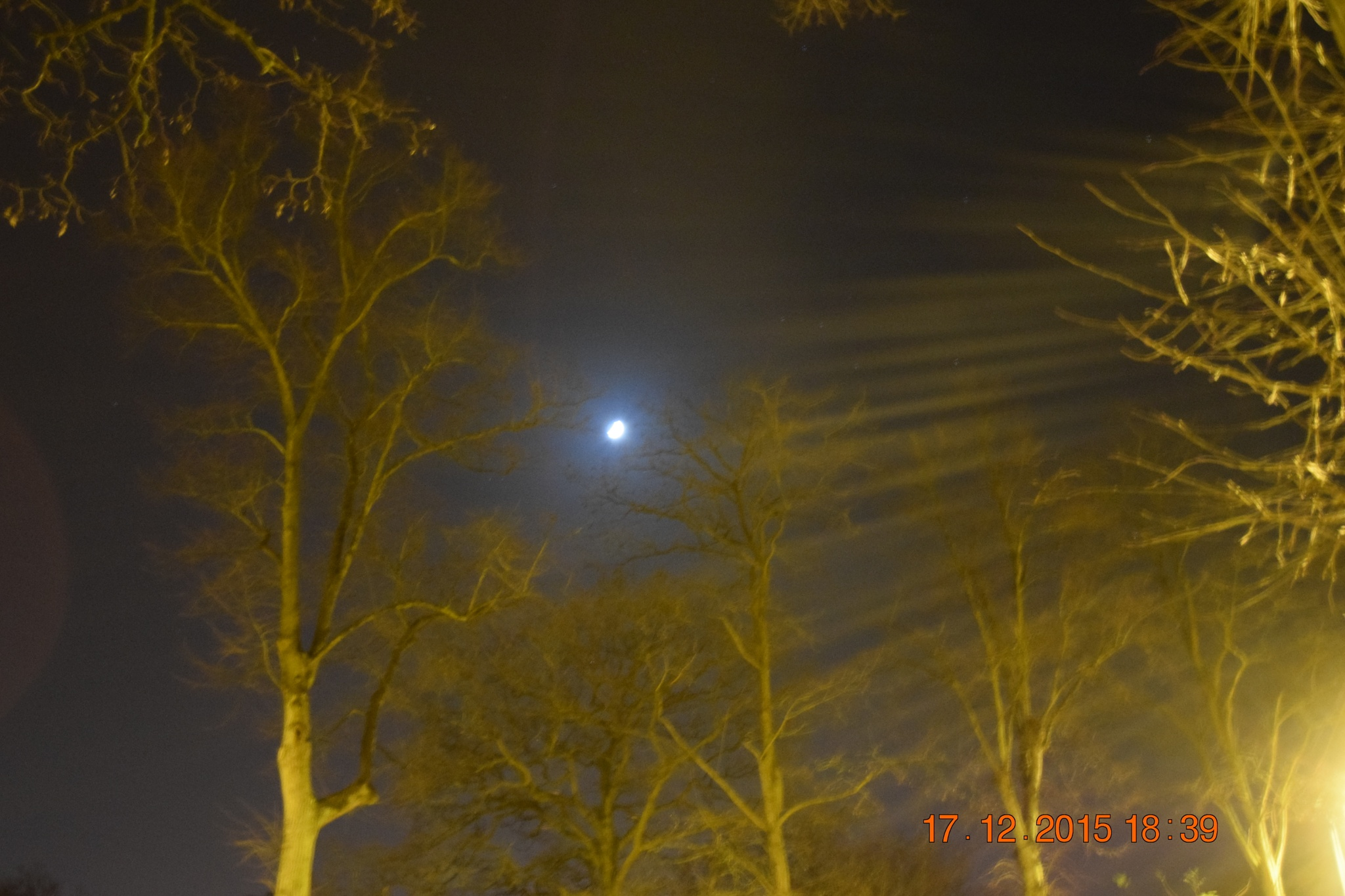 Winter tree with the moon by towen78
