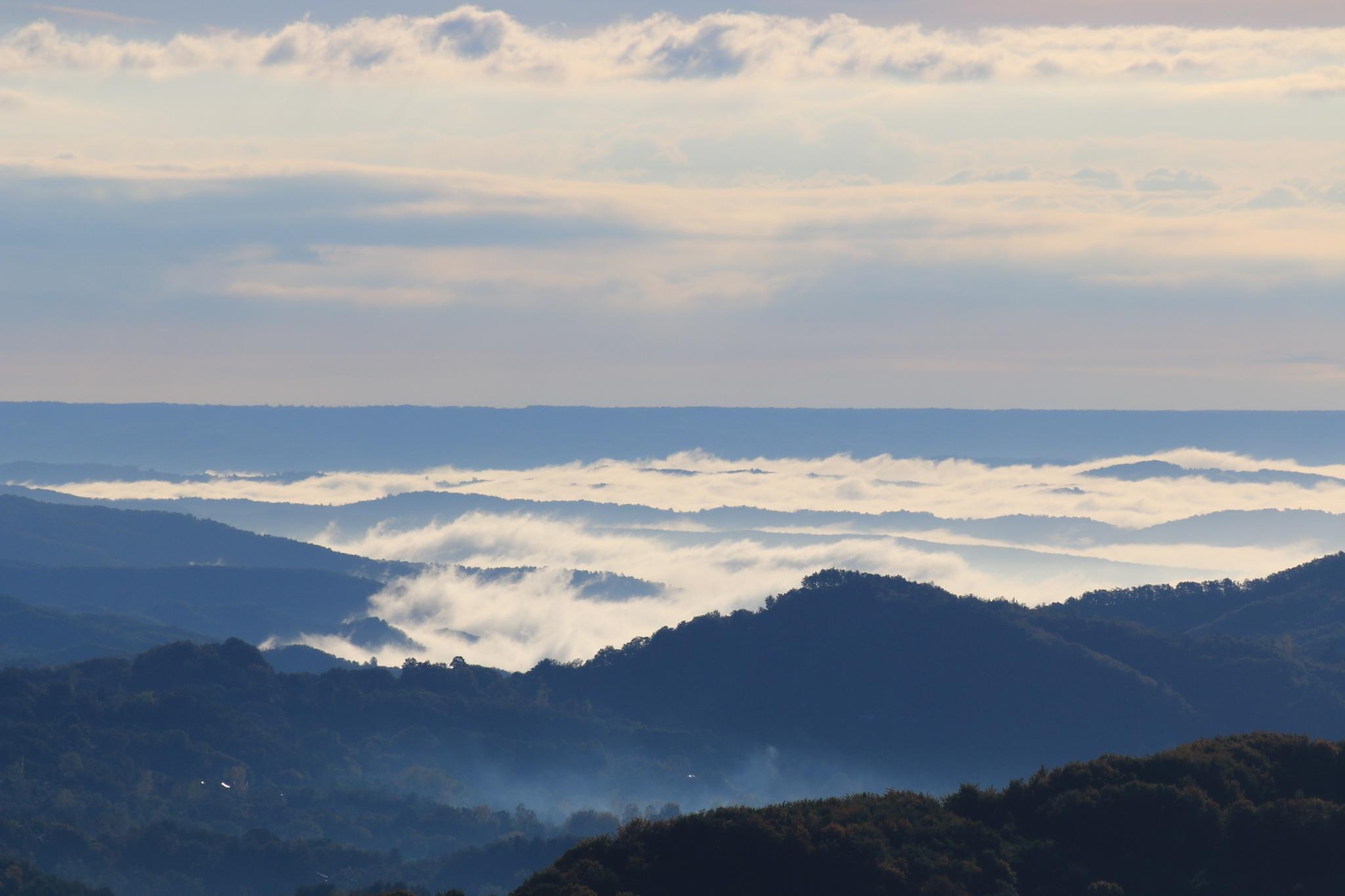 carpathians mountains at arnota by mihai muraretu