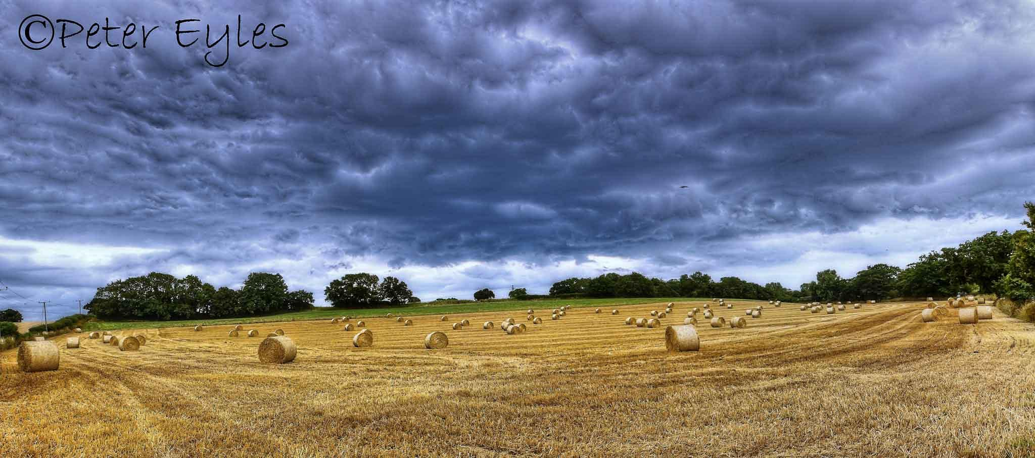 Storm gathering by Peter Eyles