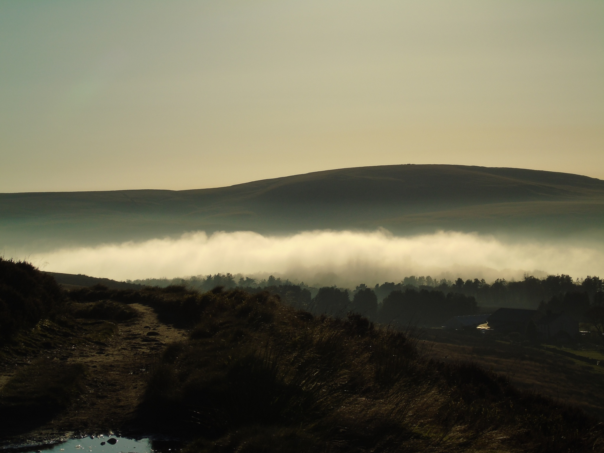 Misty Moorland by sparklingblue1