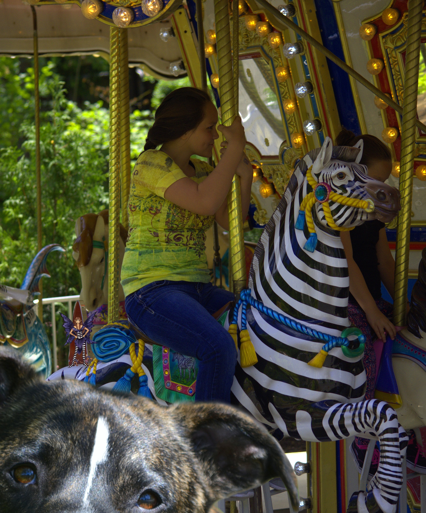 Photo in People #merry go round #woman #ride #amusement #dog #eyes #entertainment #mother