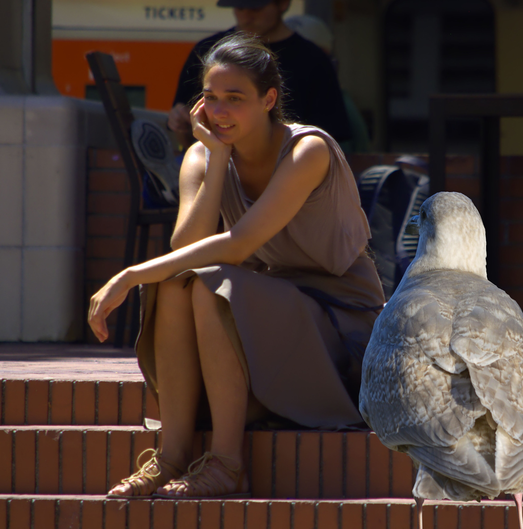 Photo in People #thoughts #thinking #woman #female #lady #bird #gull #seagull #seated #expression