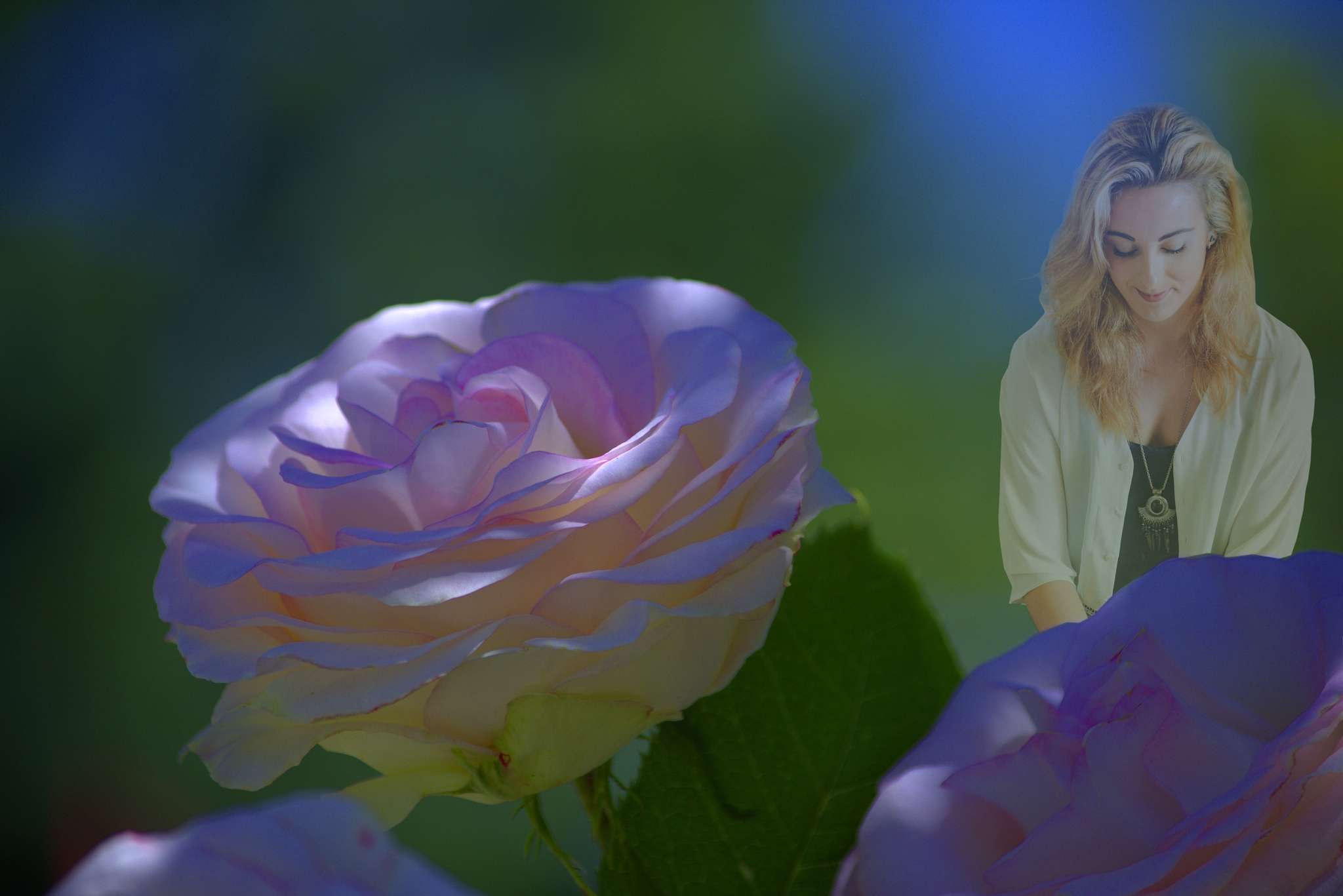 Photo in Nature #flower #rose #woman #female #lady #bokeh #beauty #misty #soft
