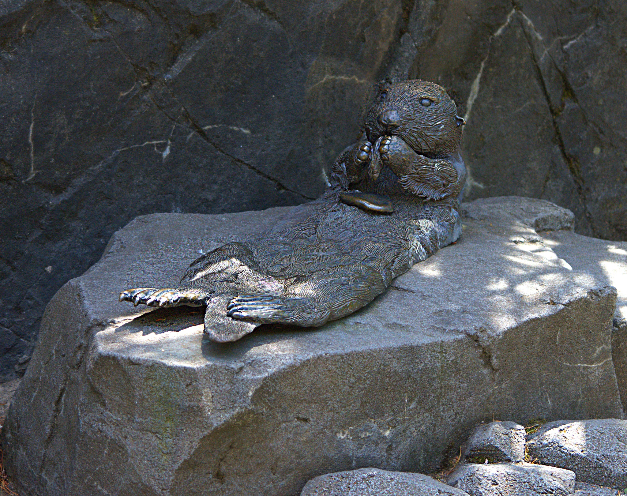 Otter Art by pscottwong