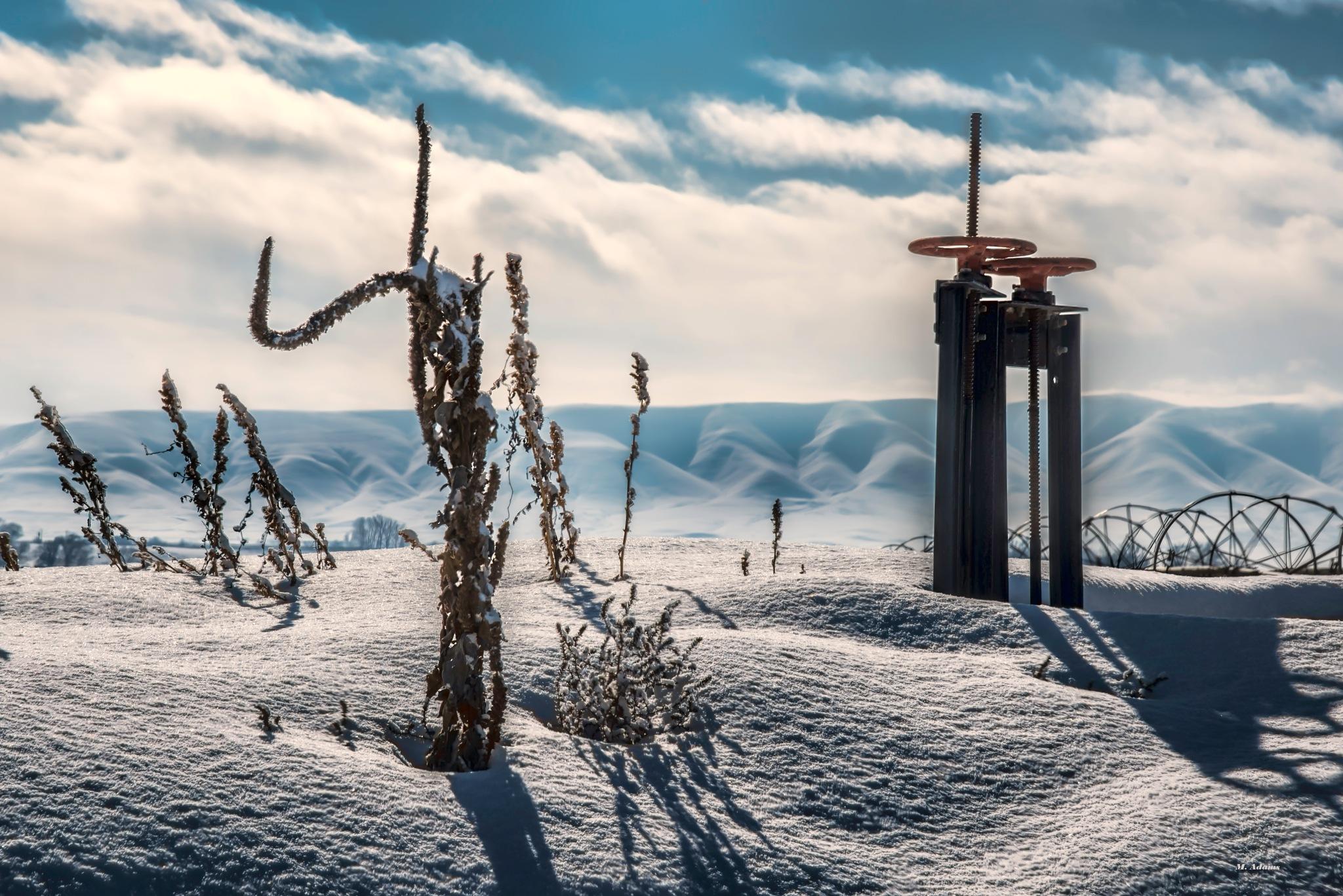 Rural Winter by Mike Adams