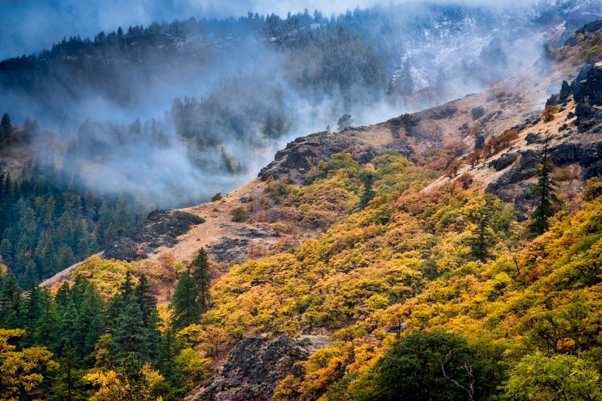 Misty Mountain by Mike Adams