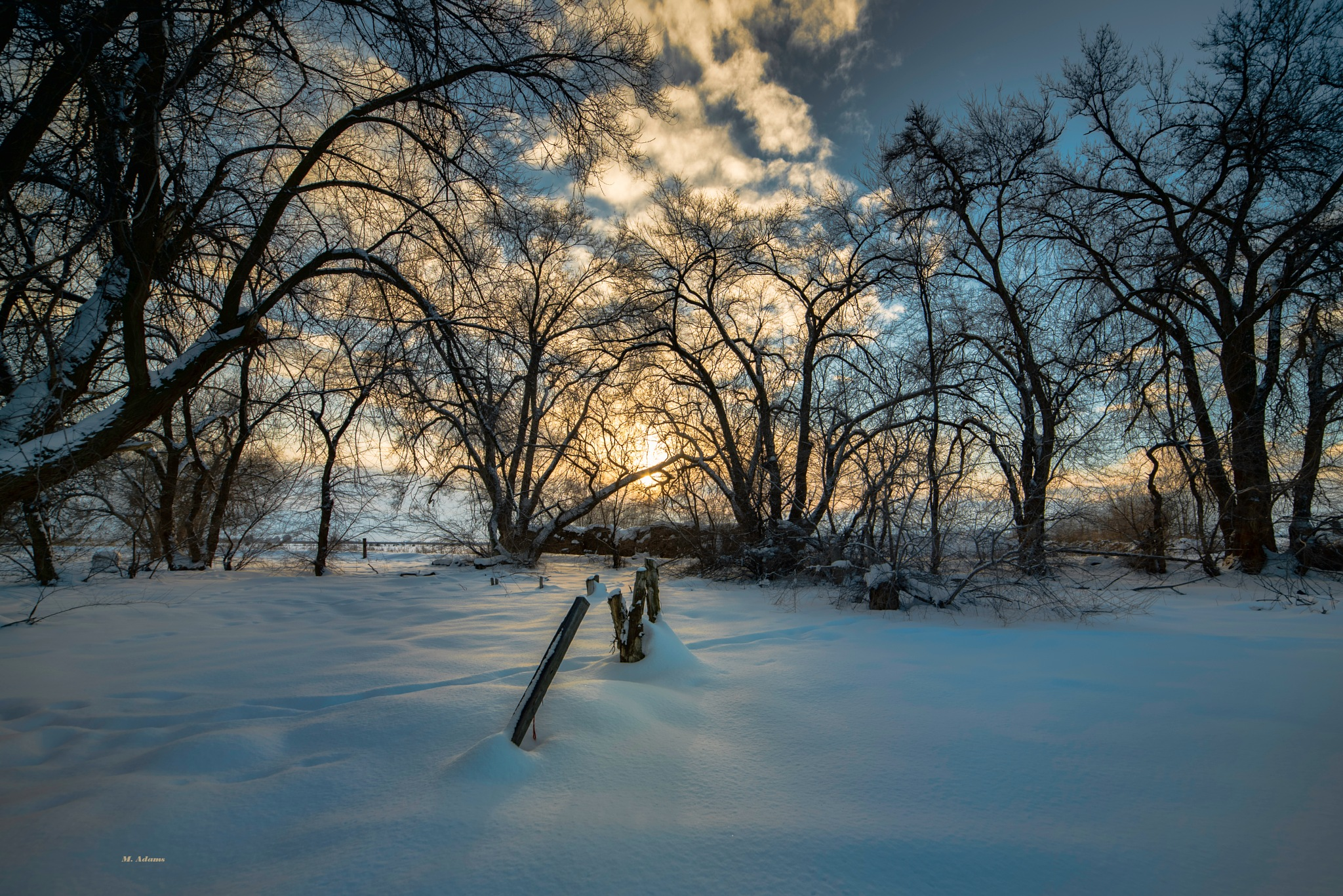 Winter Sunset by Mike Adams