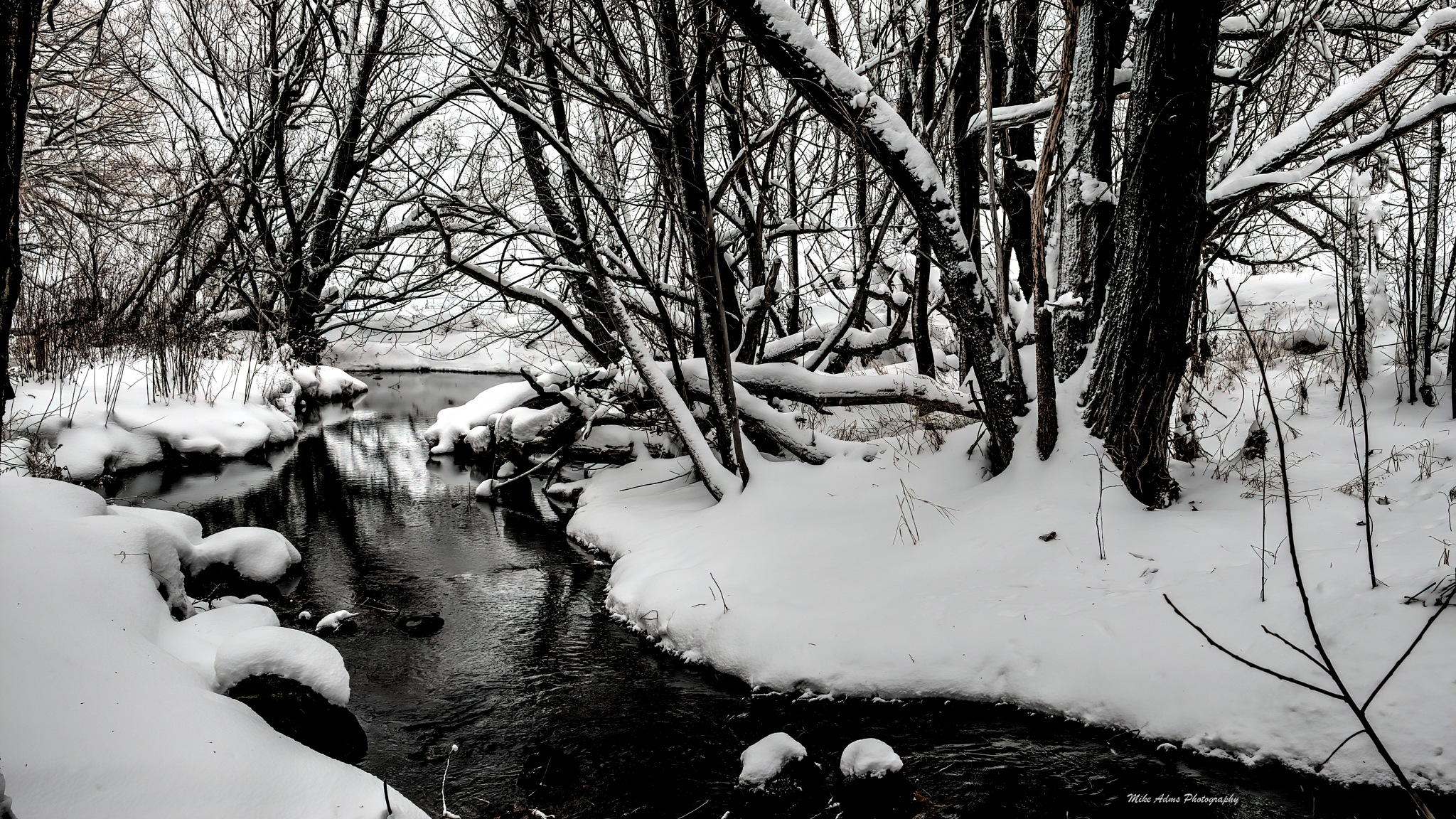 Winter by Mike Adams