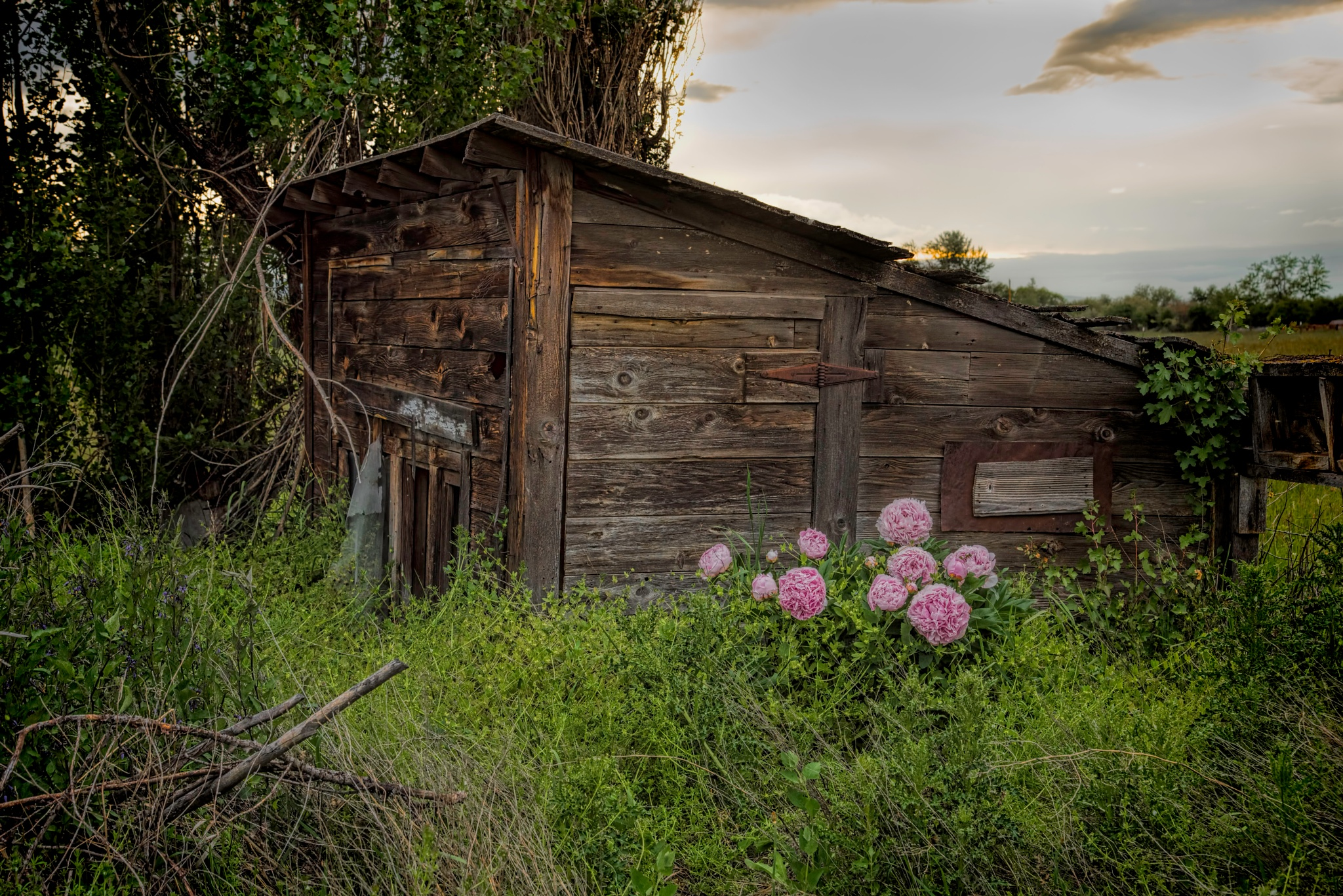 Abandoned Farm Buiding by Mike Adams