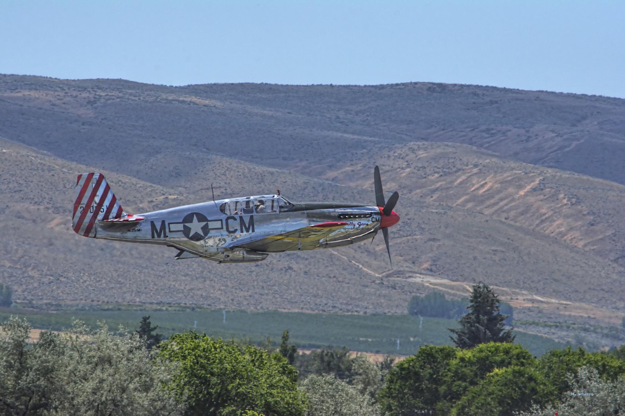 P-51 Mustang by Mike Adams