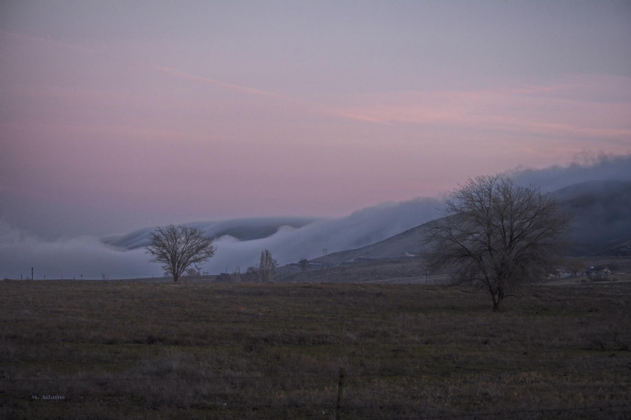 Rolling Fog by Mike Adams