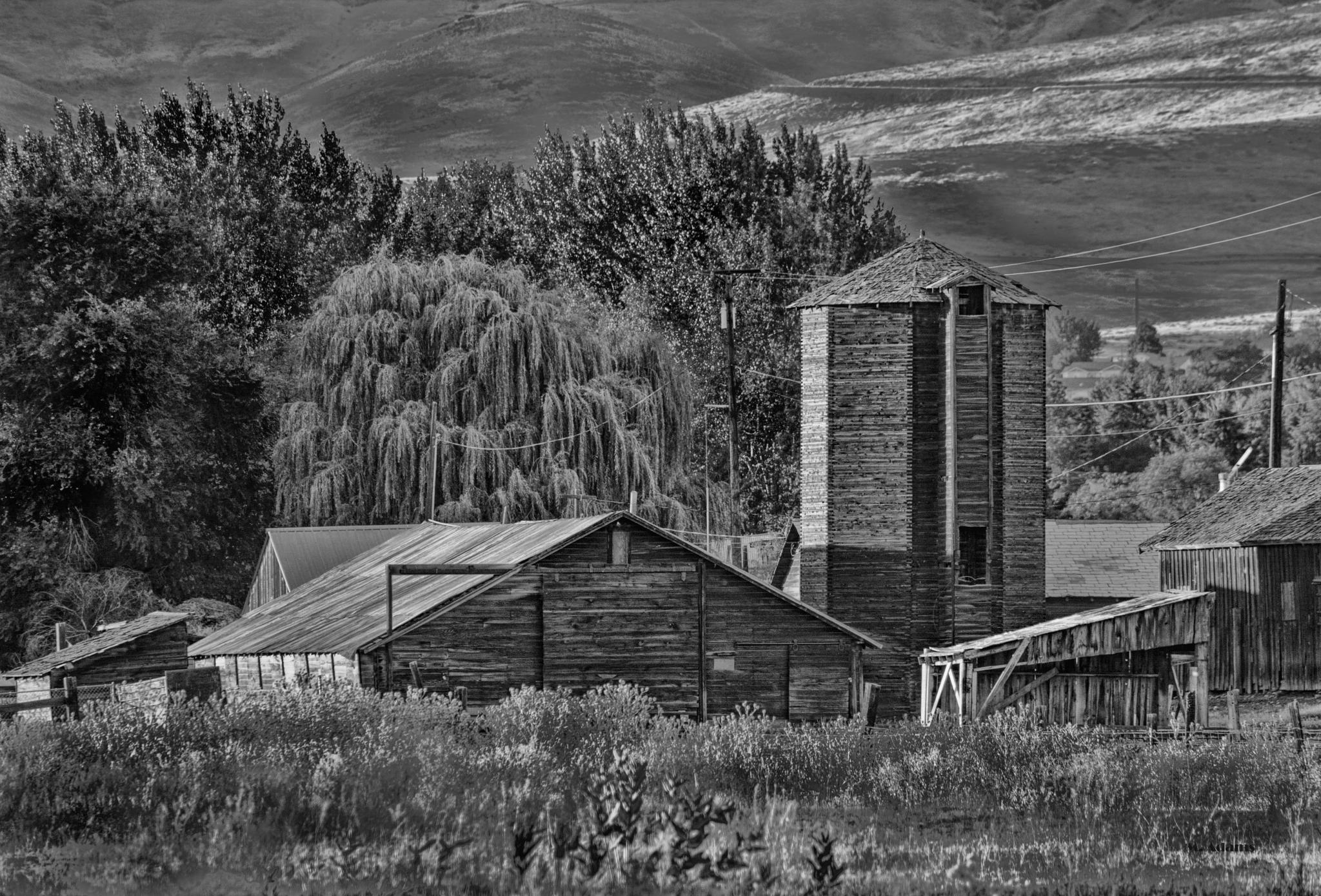 Farm in the Valley by Mike Adams