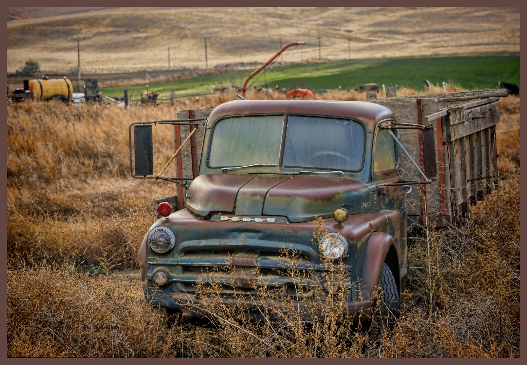 Old Dodge Farm Truck.  by Mike Adams
