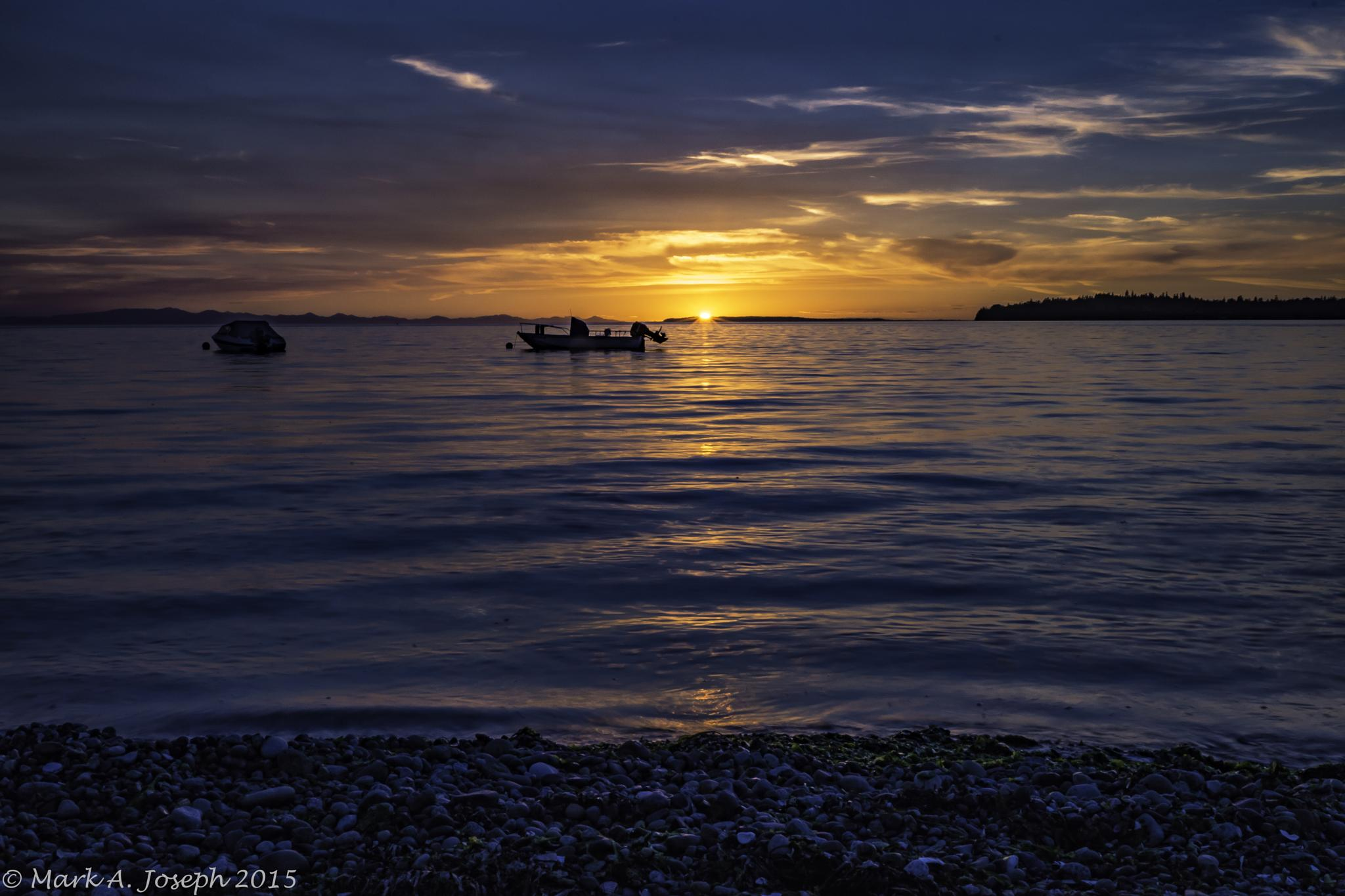 Birch Bay Beauty by Mark Joseph