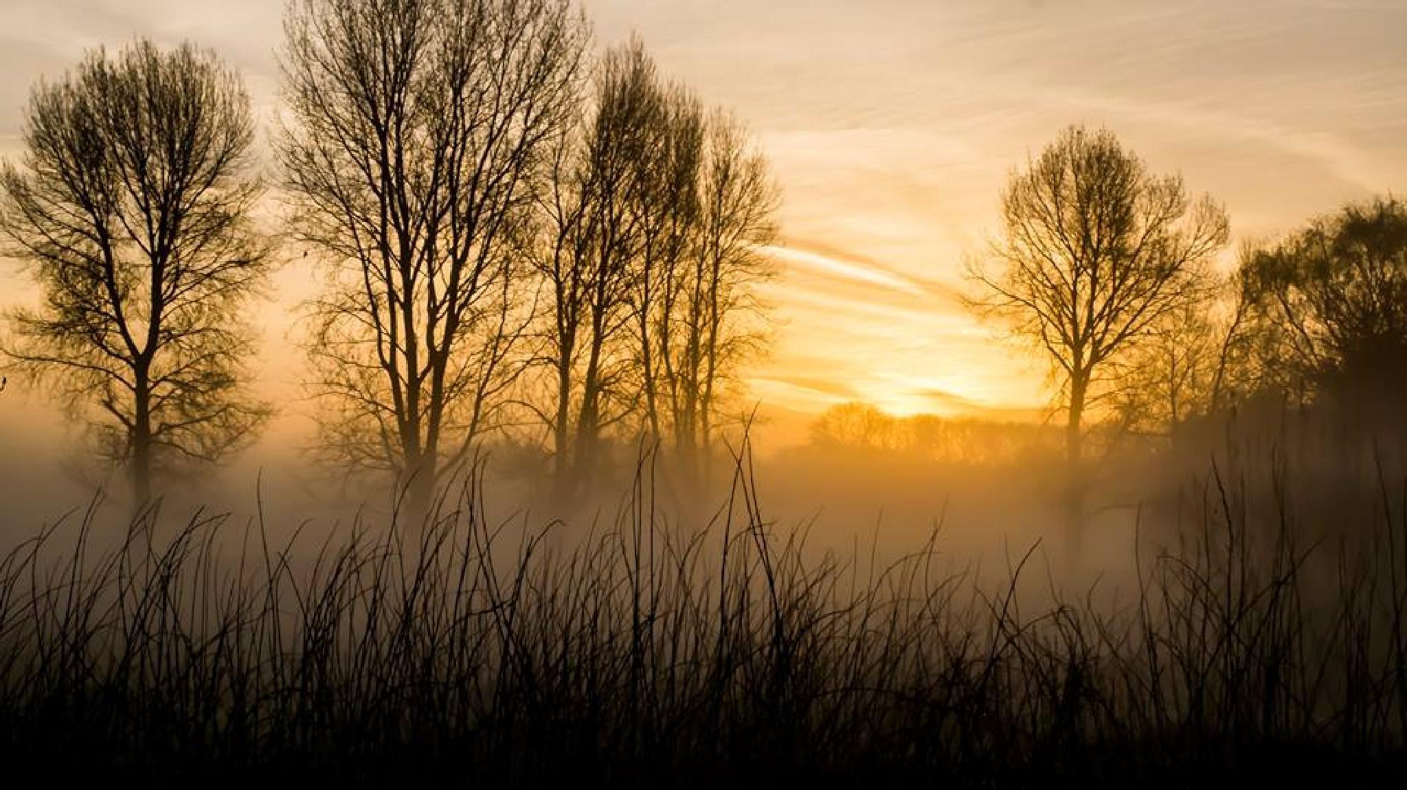 Misty sunrise by czeddy70