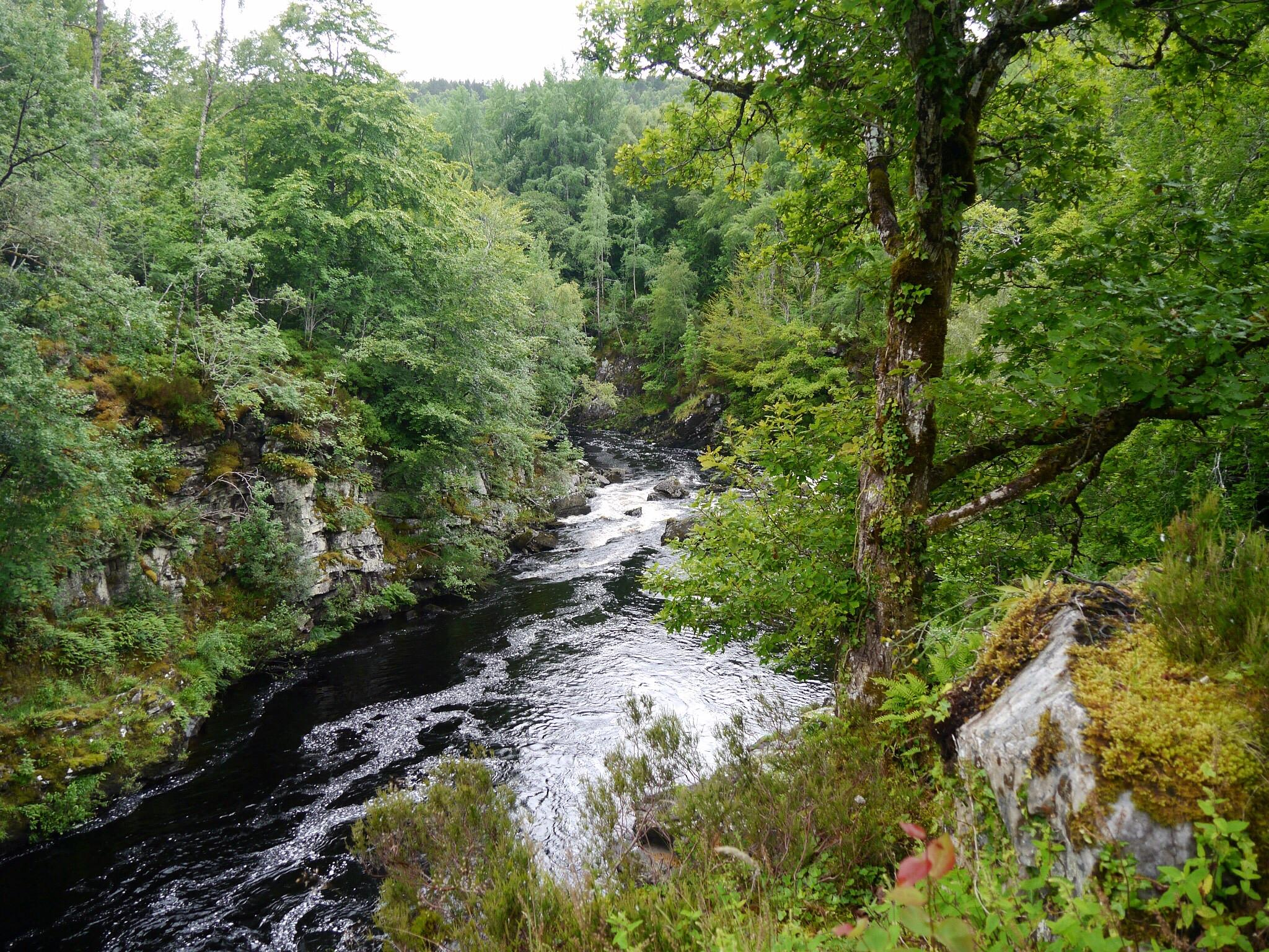 Blackwater river by GeorgeABooth