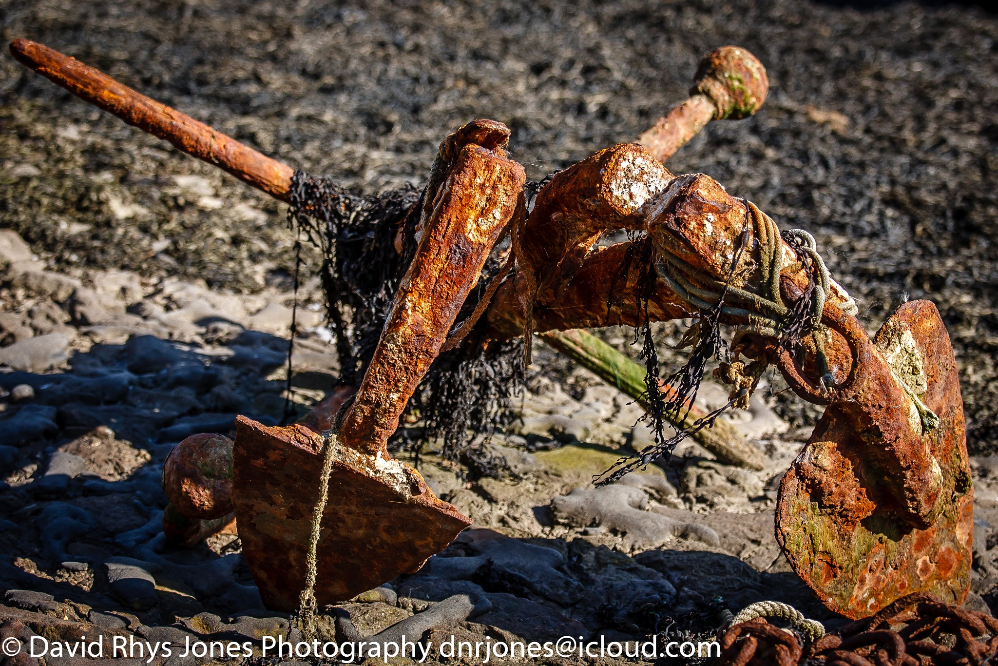 Discarded Anchor by DRJonsey
