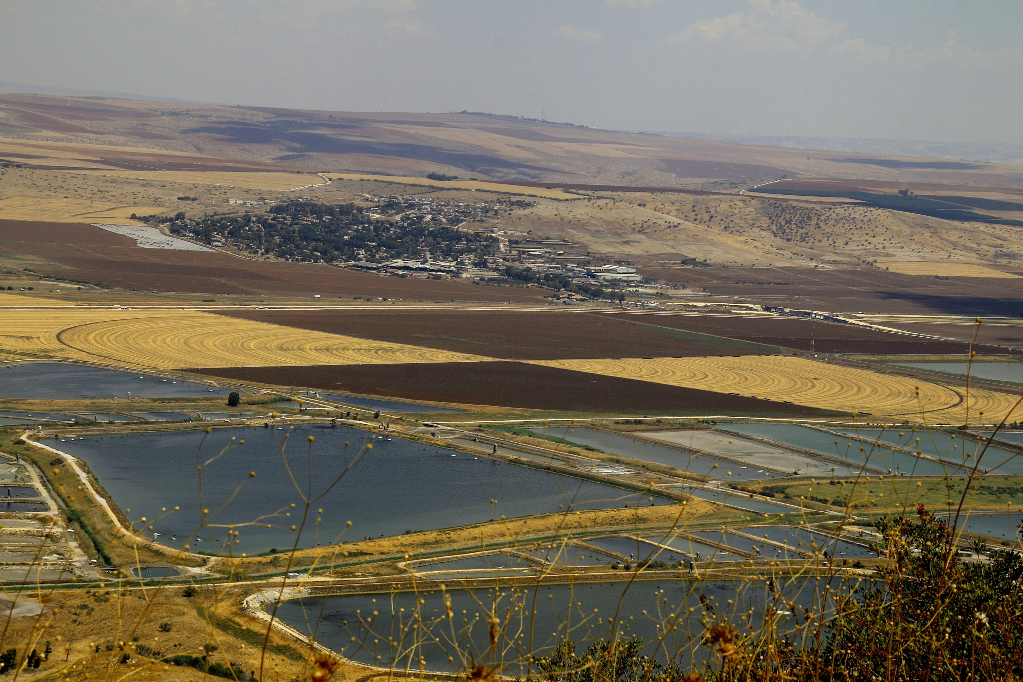 Fish ponds and cultivated fields by ITZIK YOTVAT