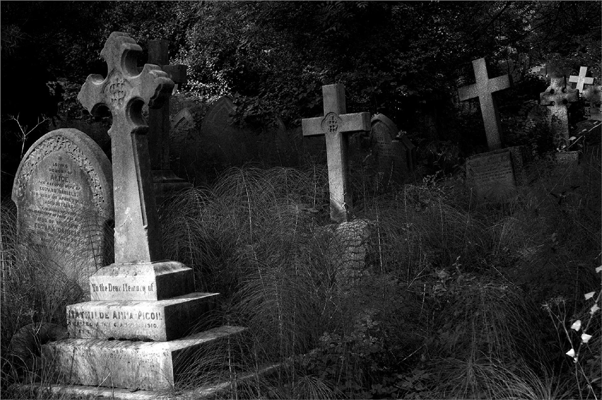 Highgate Cemetery, London by CliveRowley