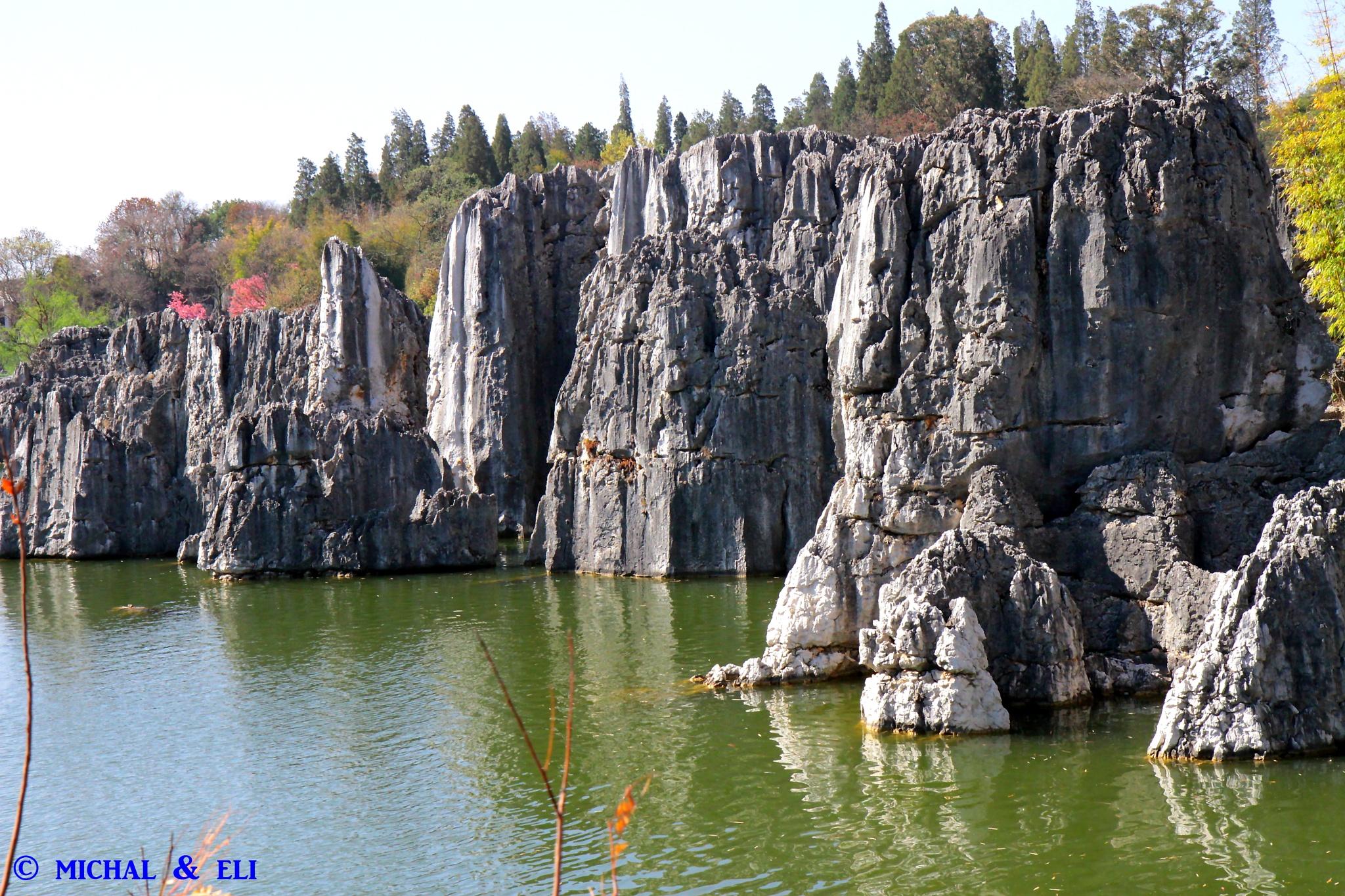 Stone forest ...Shian China  by mieymay
