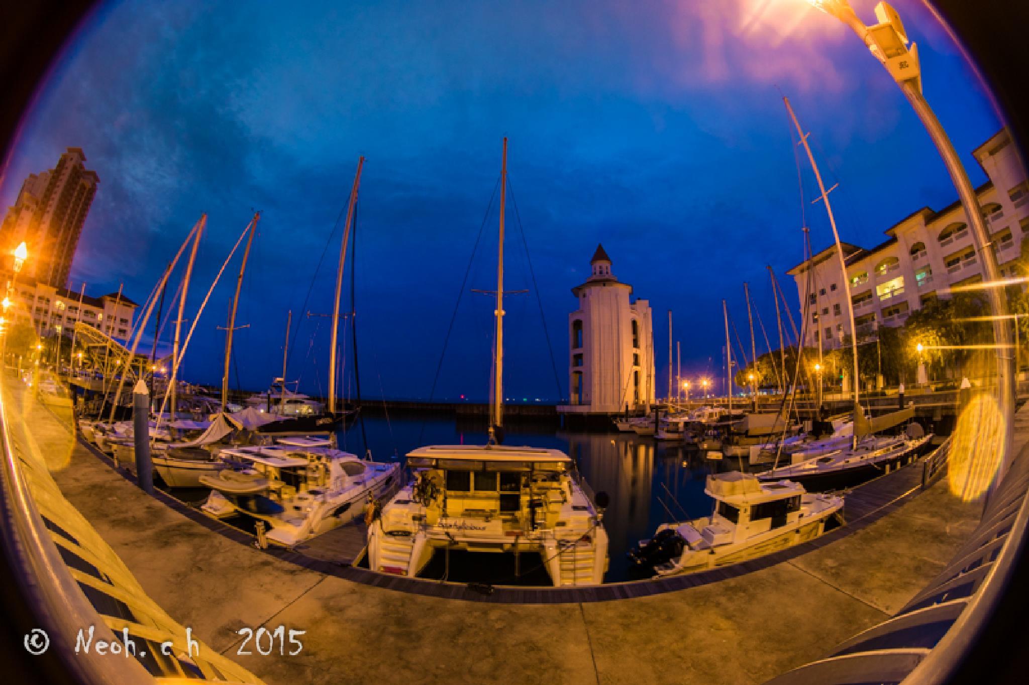 Marina by neohch