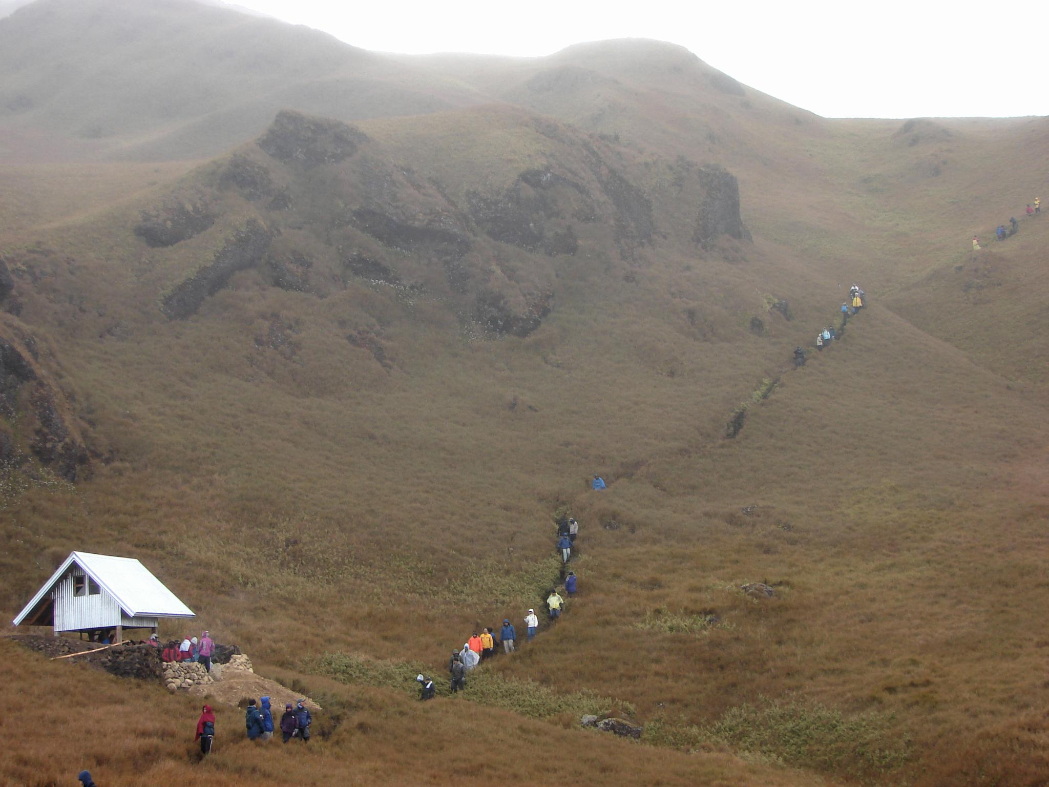 Saddle Camp, Mt. Pulag by Bien Bacarra