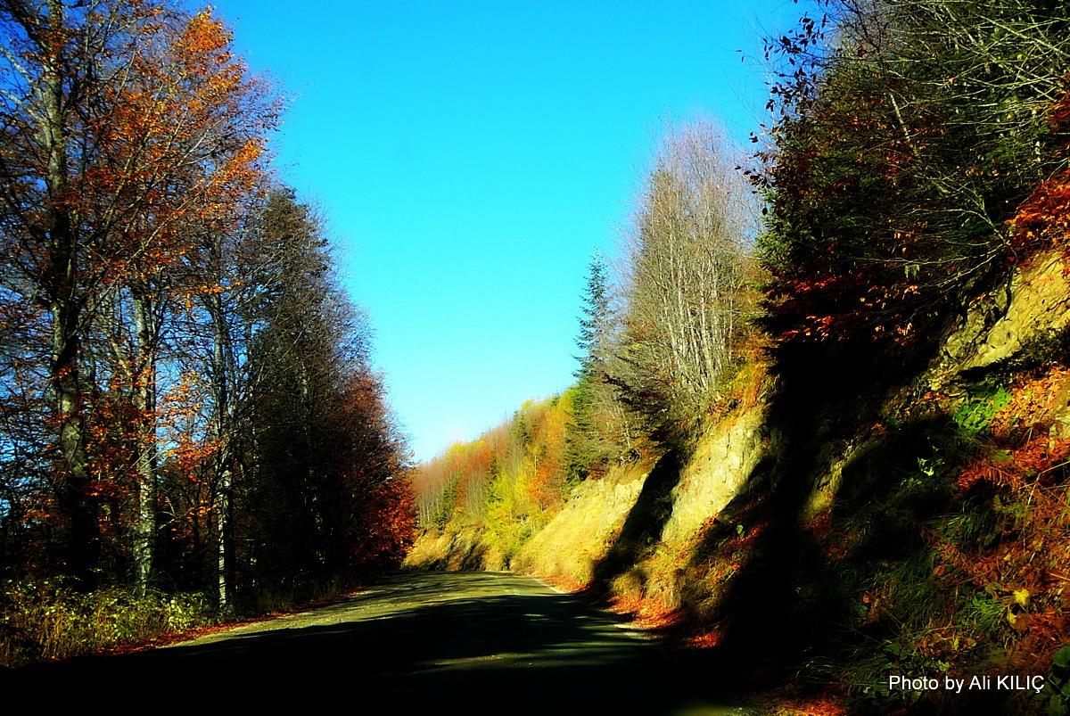 Seven lakes autumn in the nature park by Ali KILIÇ