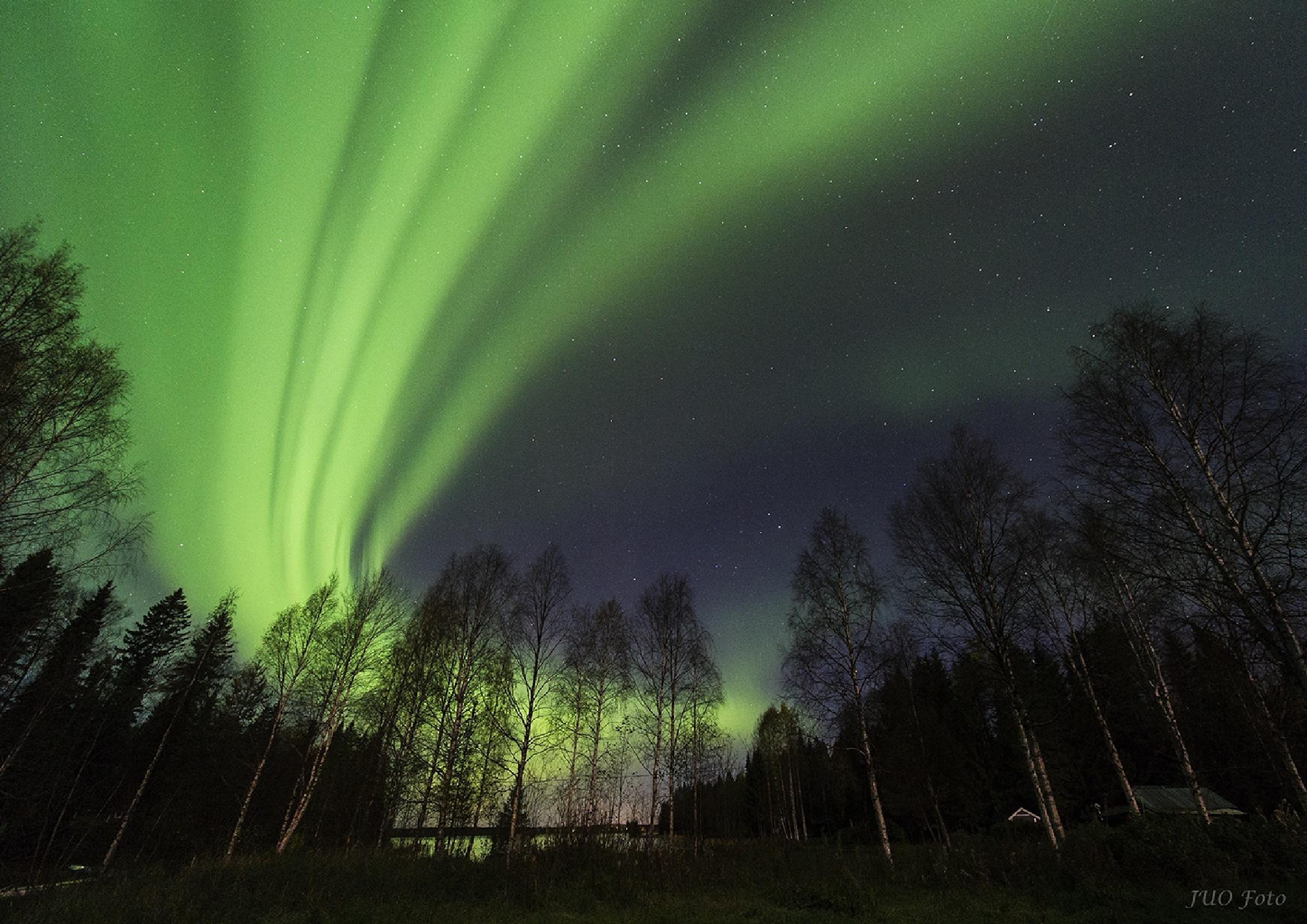 Aurora by Ulf Jonsson