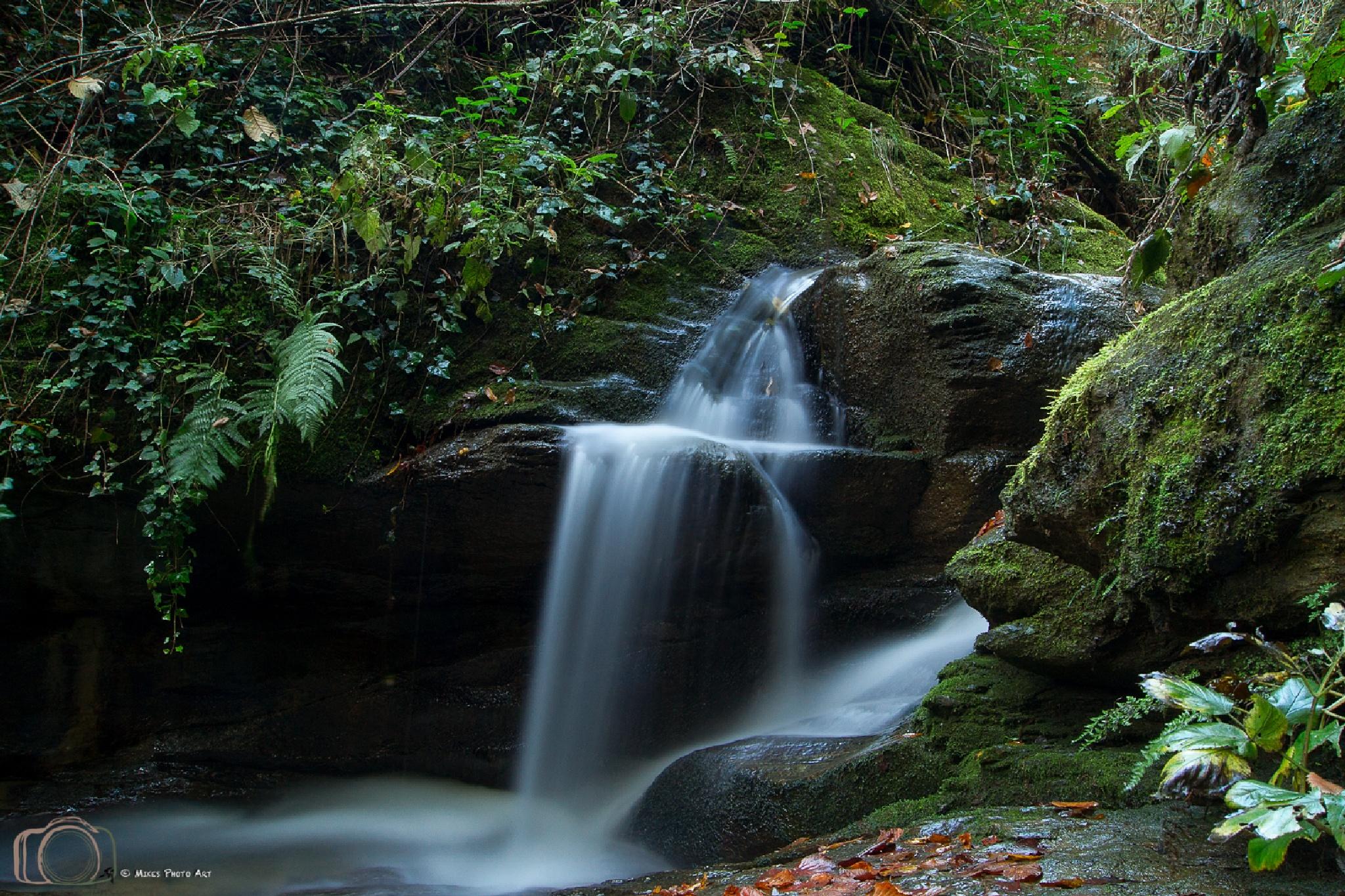 Waterfall by Michael Suppan