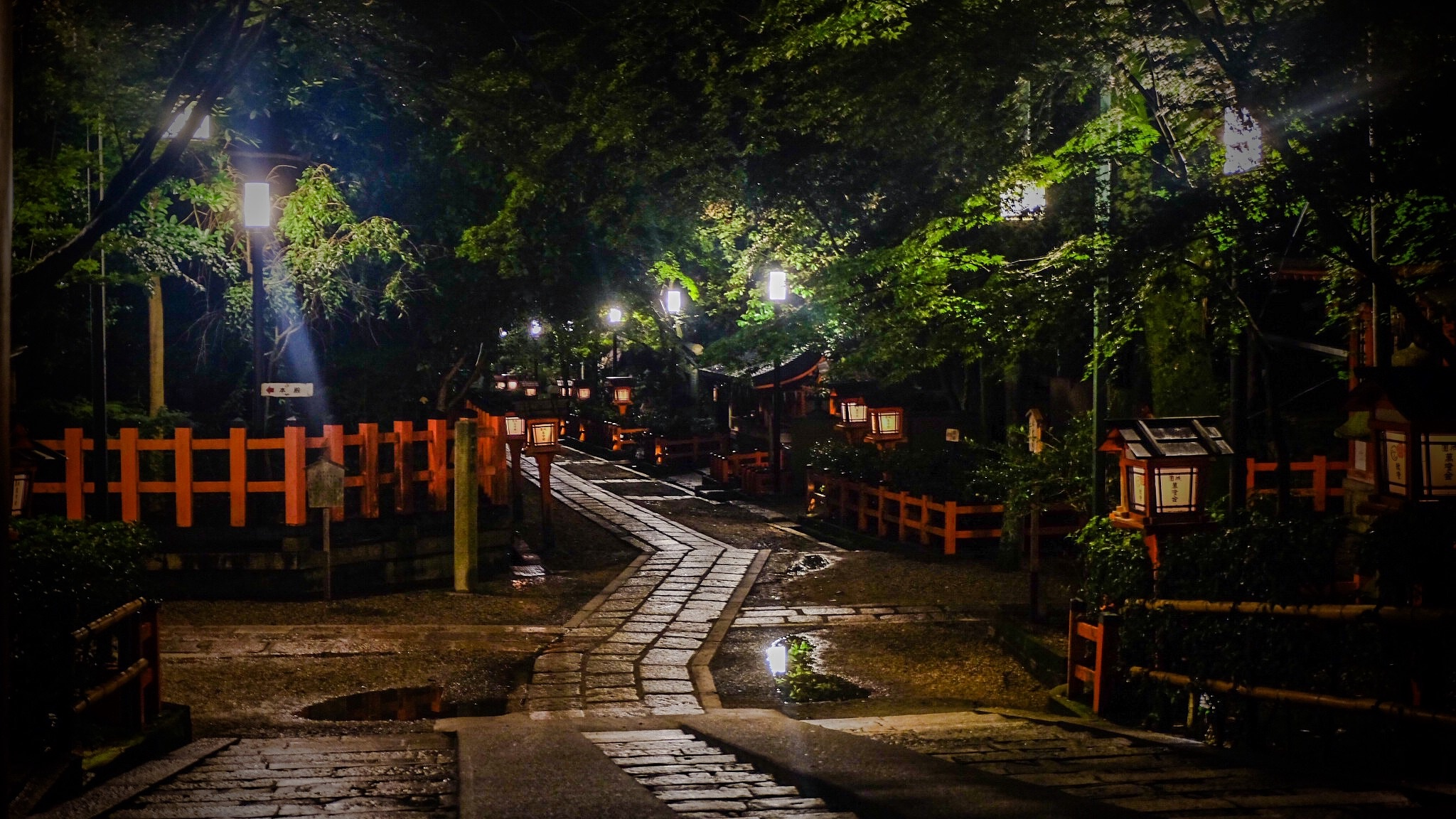 An Evening Stroll. Kyoto by Magda Swiba