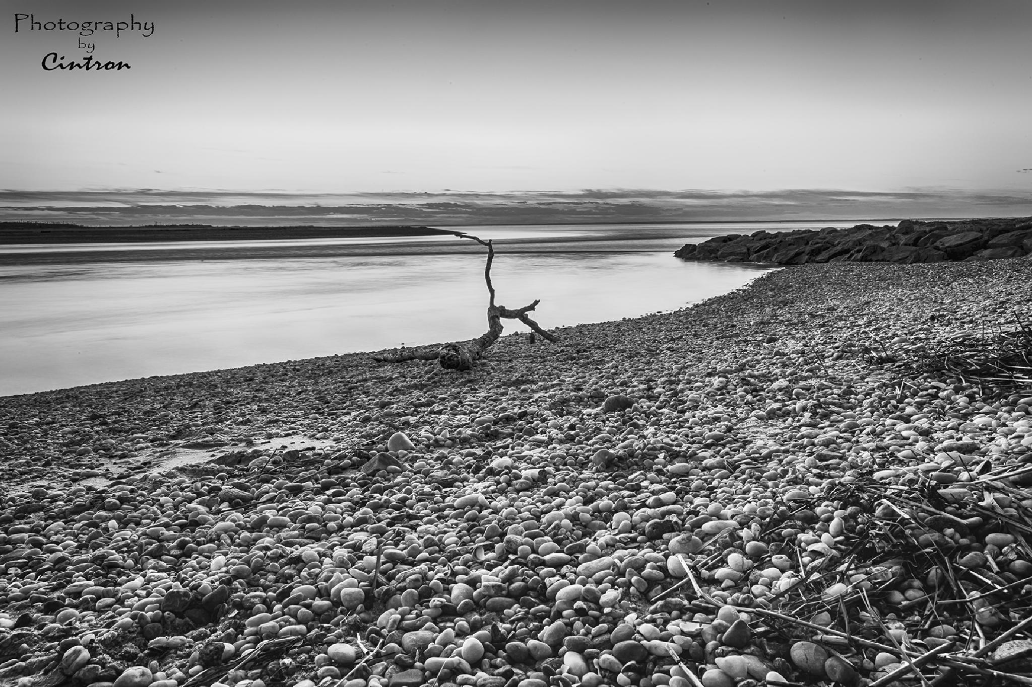 West Meadow Beach by Photographybycintron