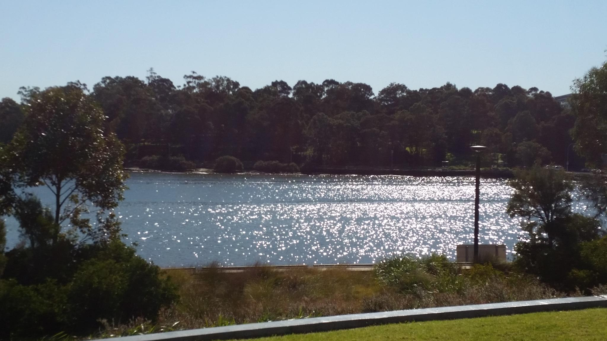 Homebush Bay. by John Beauchamp Ball